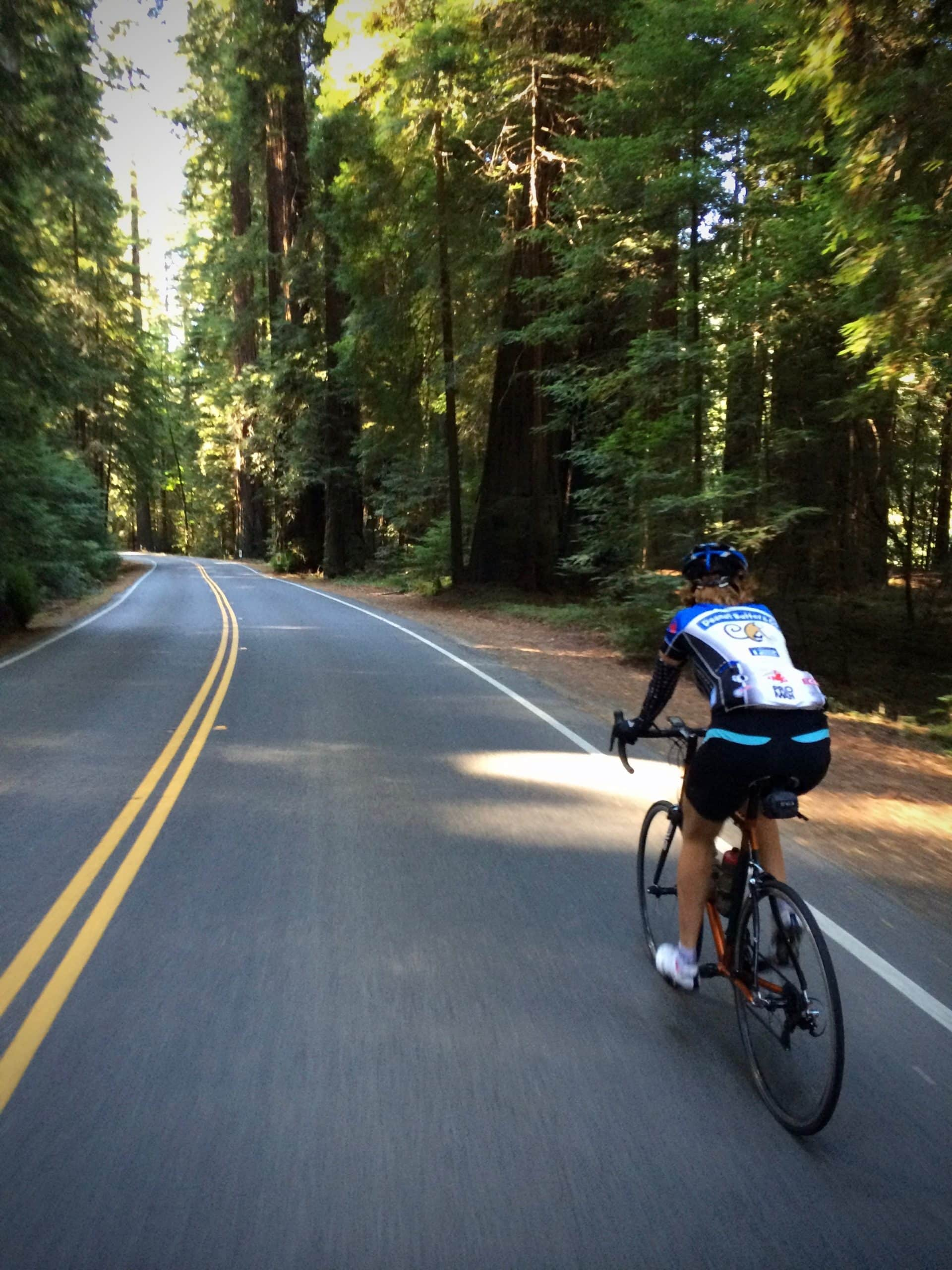 Gravel Girl riding the Avenue of the Giants road in Humboldt Redwoods state park in California.