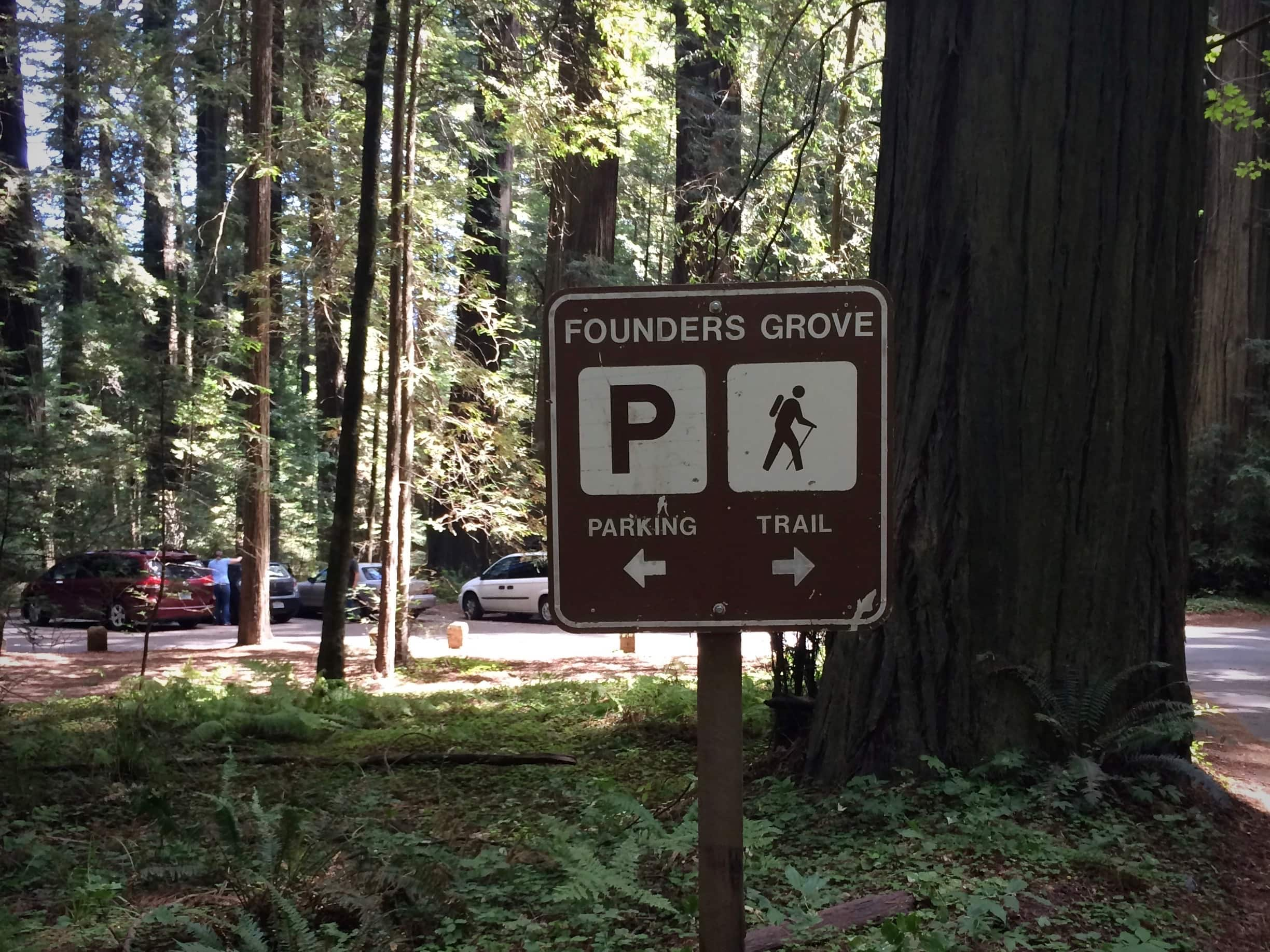 Parking area at Founders Grove along the Avenue of the Giants in northern california.