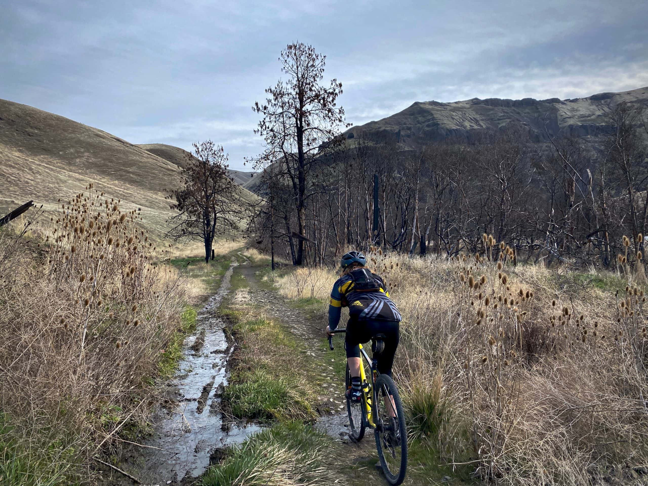 Gravel cyclist on double track trail with standing water near the Harris Ranch on the Deschutes River.