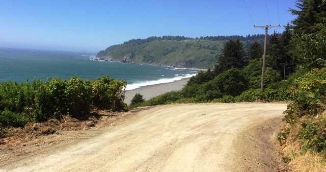 The Coastal Drive in Redwoods National park near Crescent City, California.