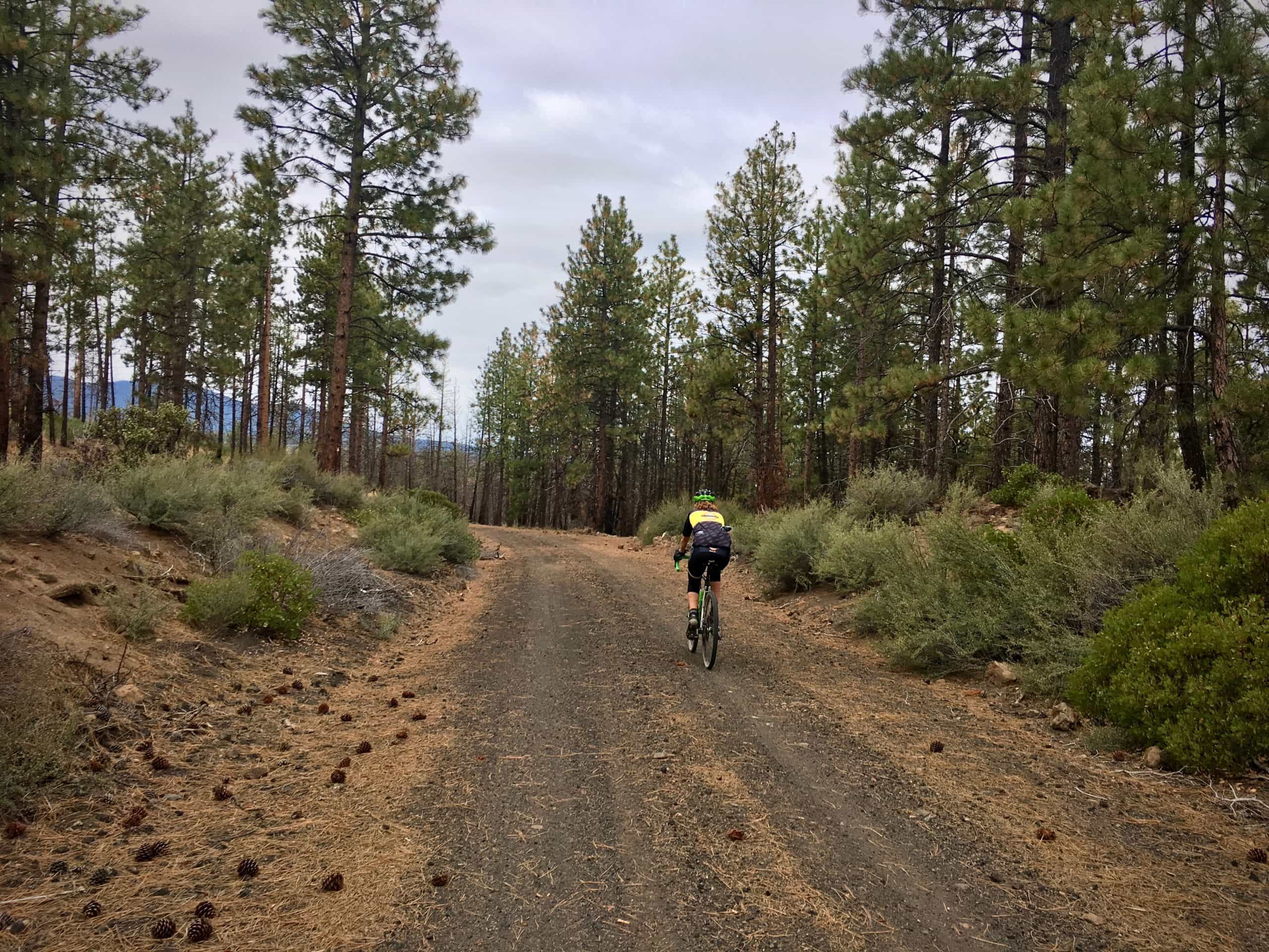 Cyclist on gravel road in the Skyline Forest near Bend, Oregon.