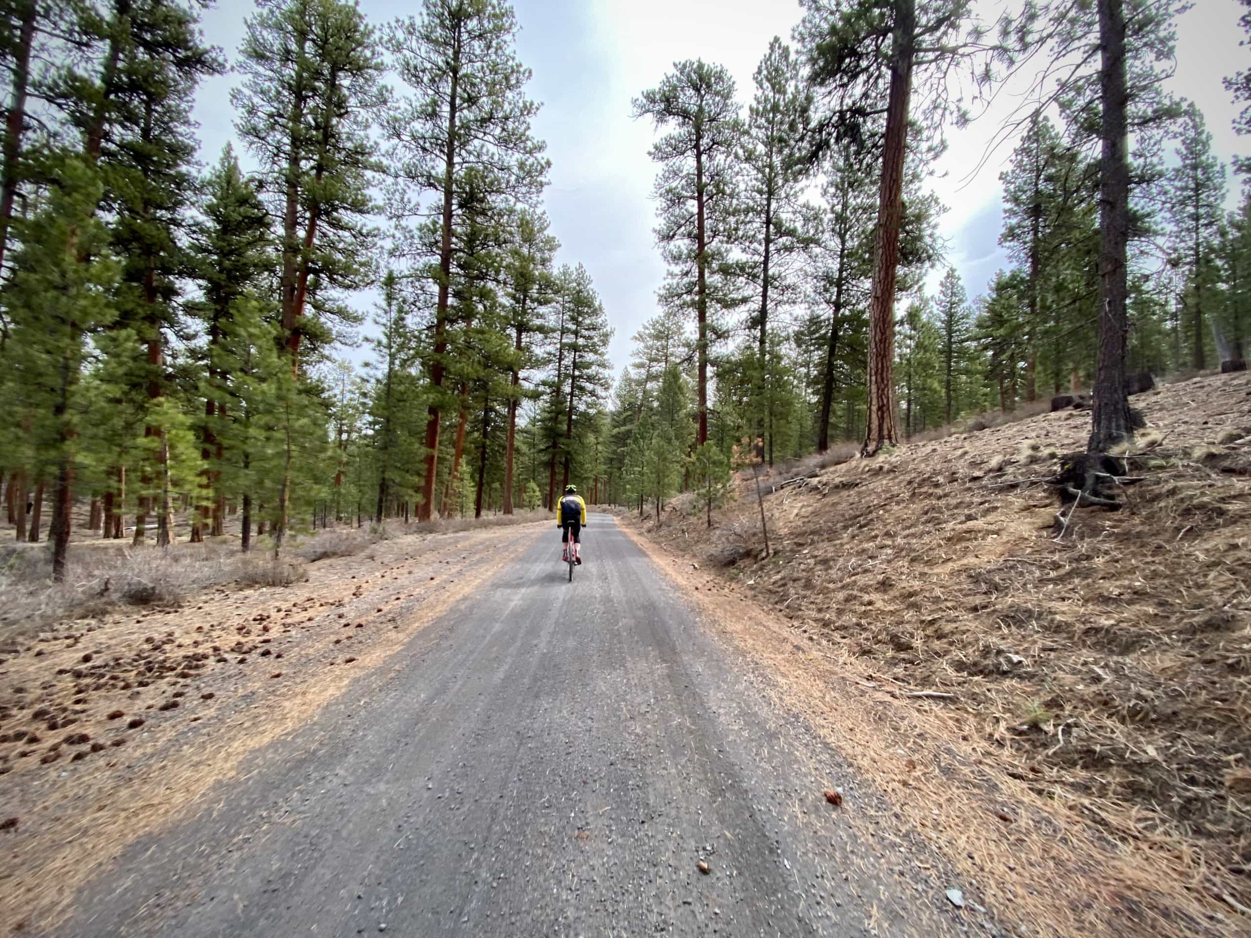 Cyclist on Pine Mountain road leading to observatory near Prineville, OR.