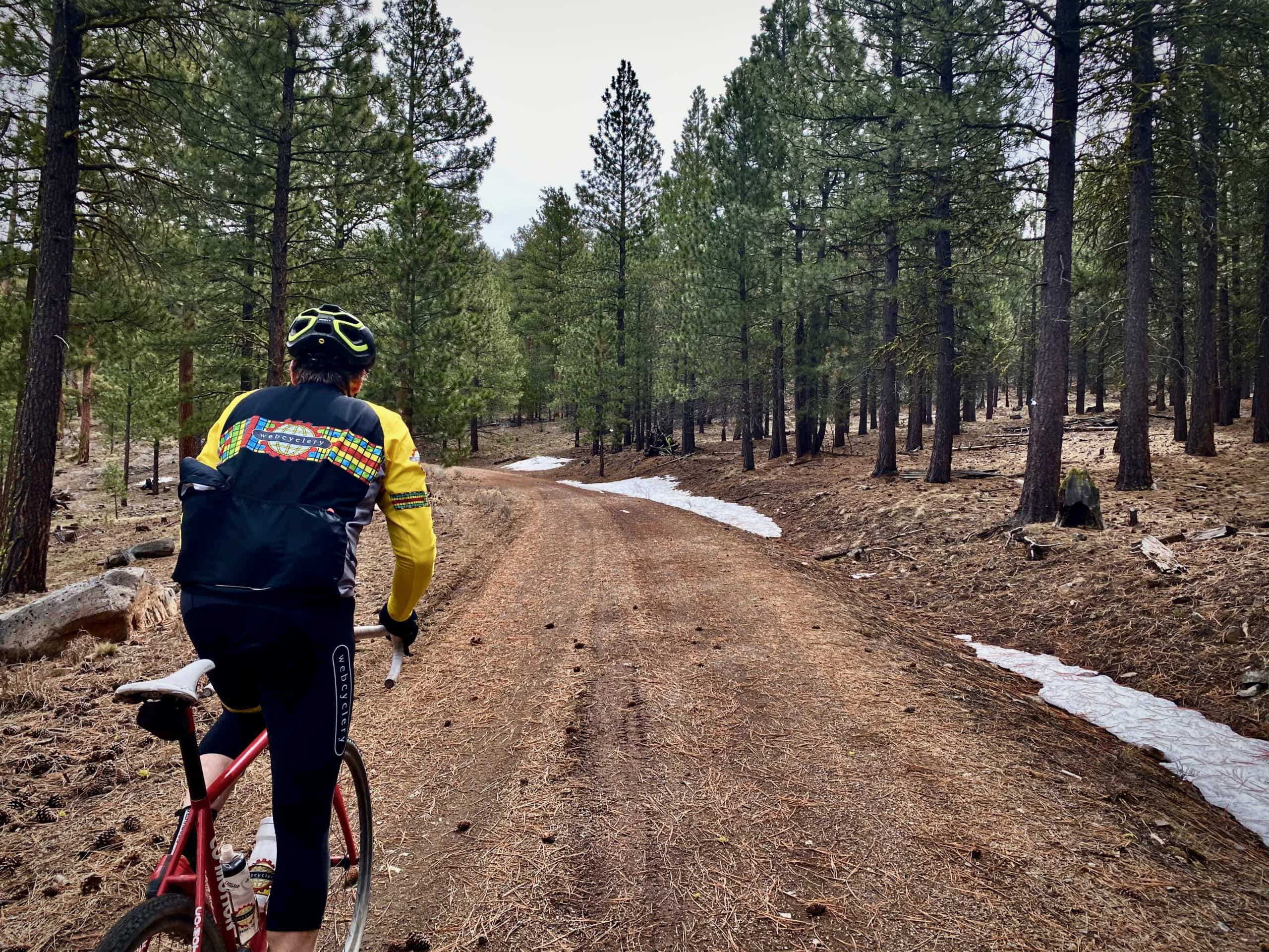 Cyclist riding forest service road on Pine Mountain ridge near Bend, OR.