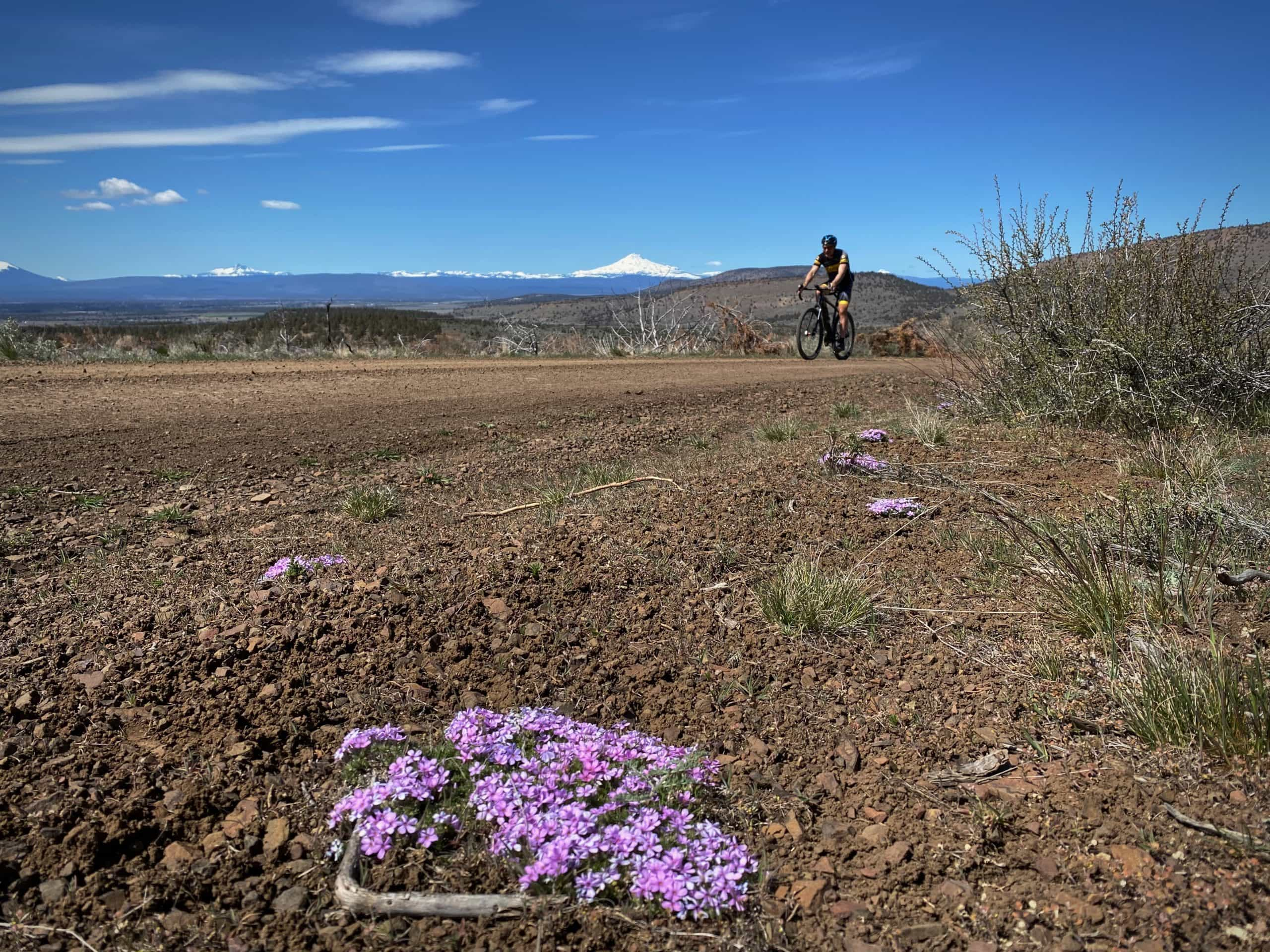 Gravel cyclist climbing hill in Crooked River National Grassland near Prineville, Oregon.