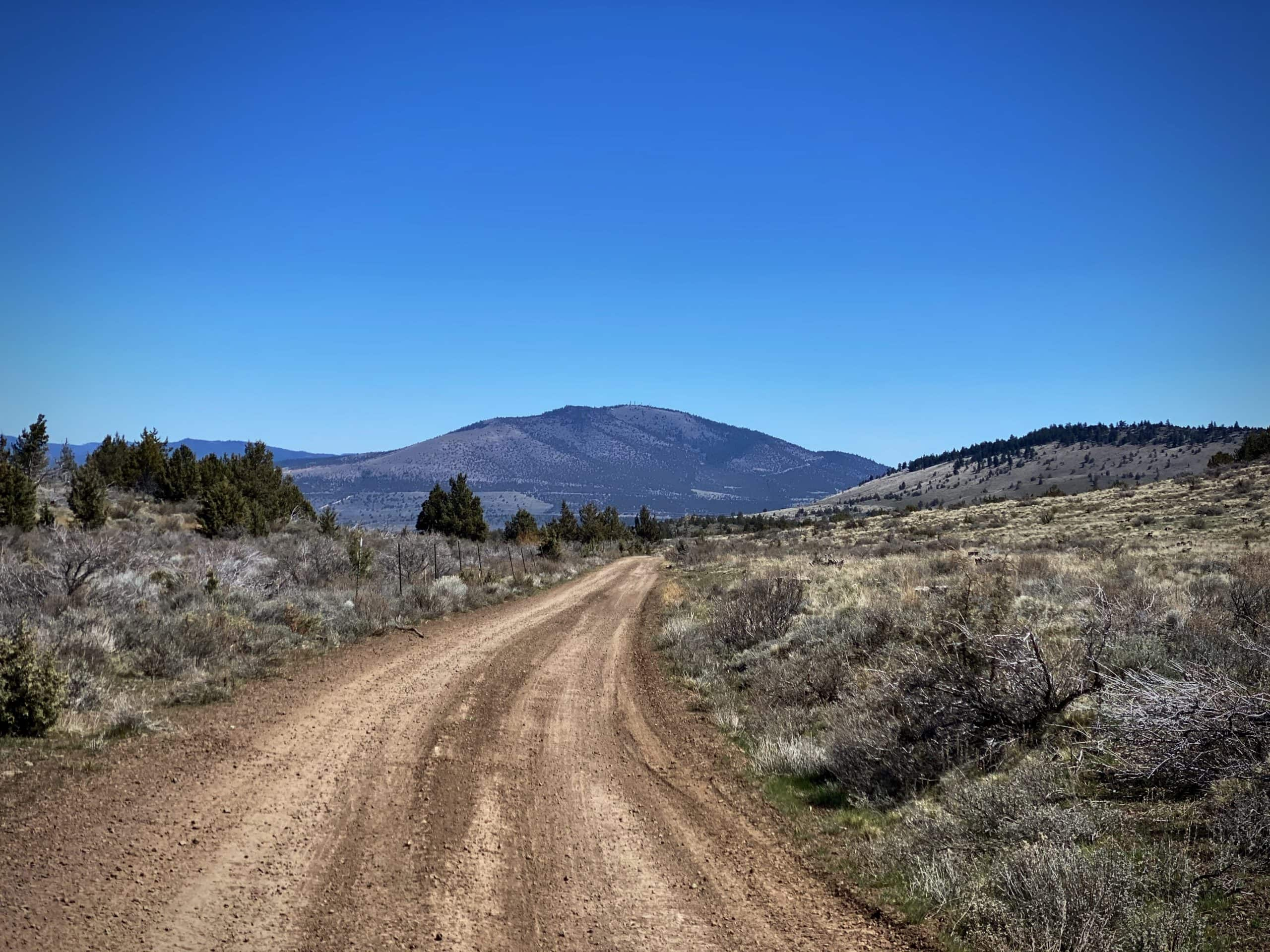Grizzly Mountain in the distance. Near Prineville, OR.