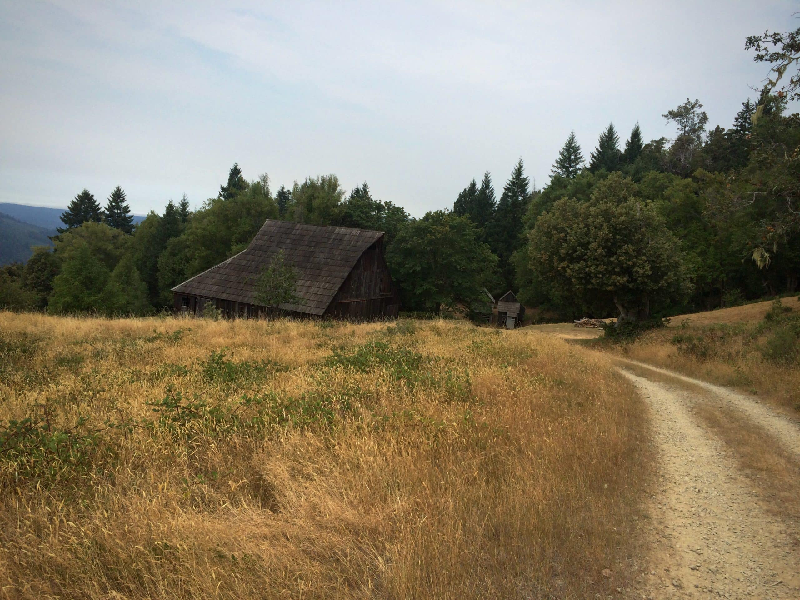 Old bunkhouse on the Lyons ranch historic site in Redwood National park in northern California.