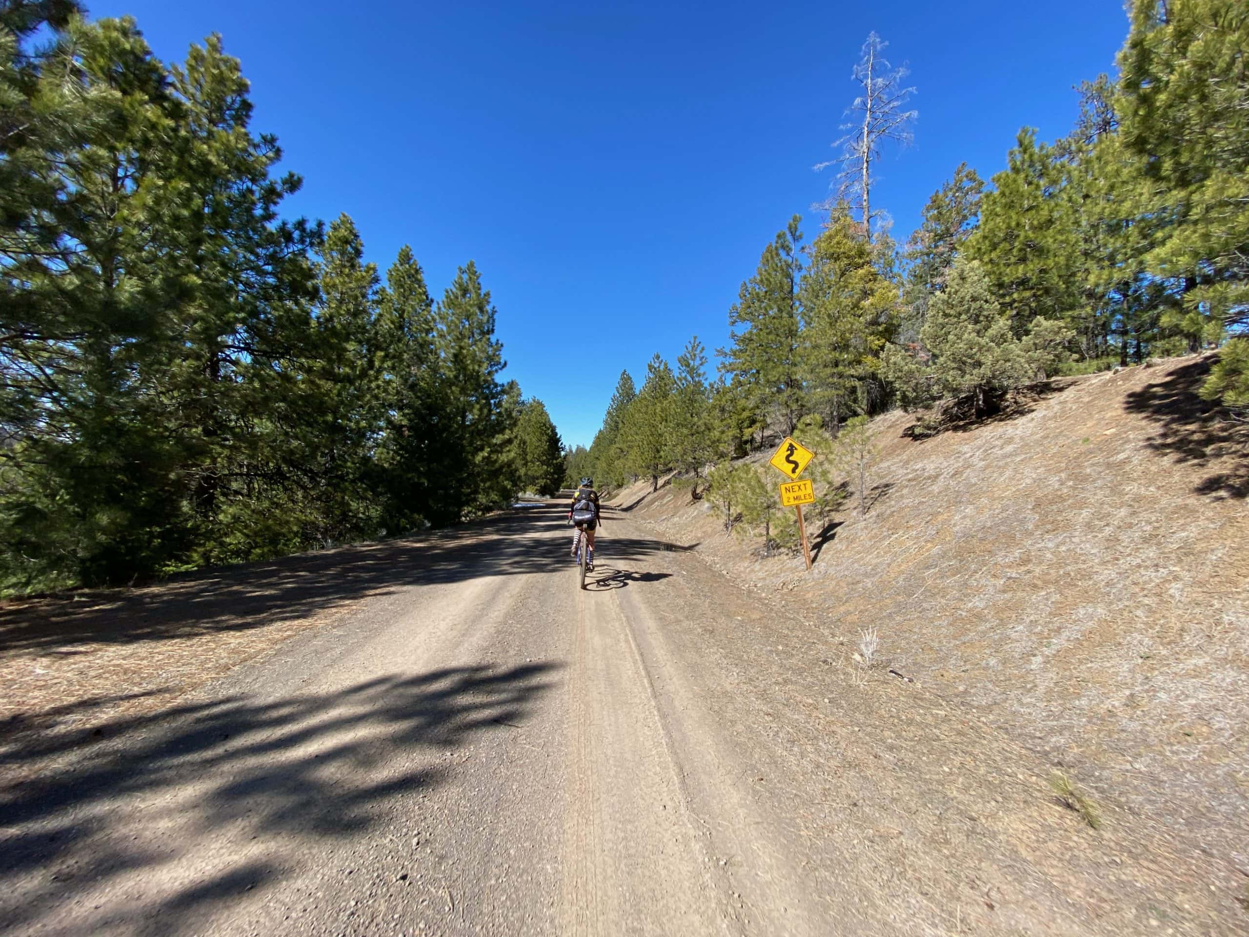 Winding descent sign on NF-16 in the Ochoco National forest near Prineville, OR.