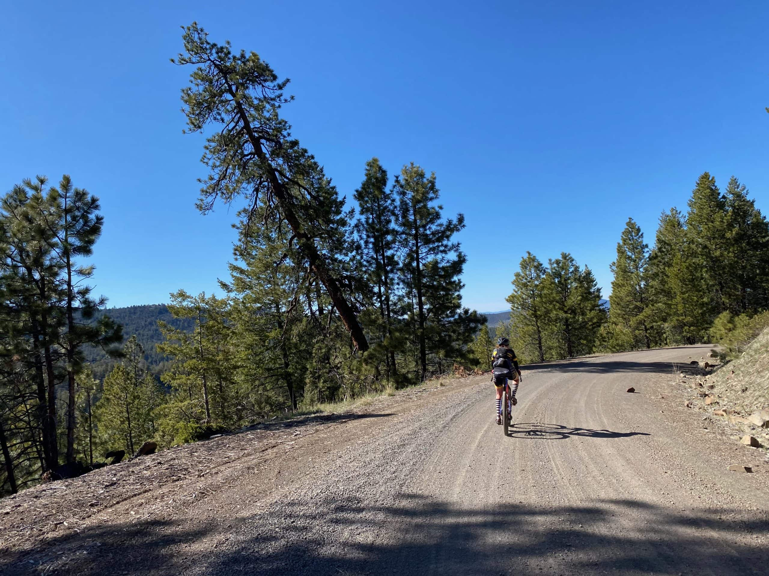 Gravel Girl descending NF-16 in the Maury mountains of Central Oregon.