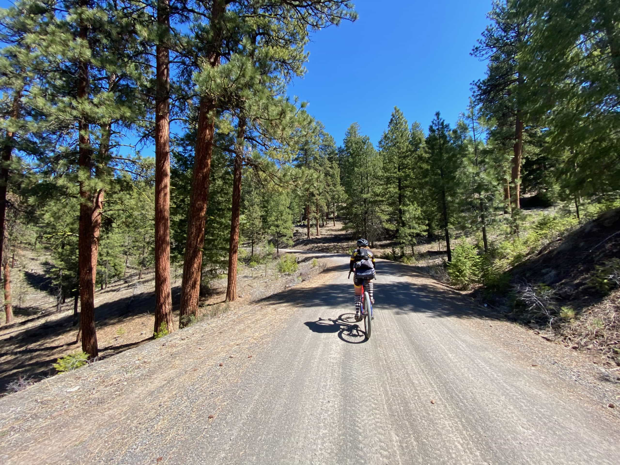 Woman cyclist on gravel road in the Maury mountains near Prineville, OR.