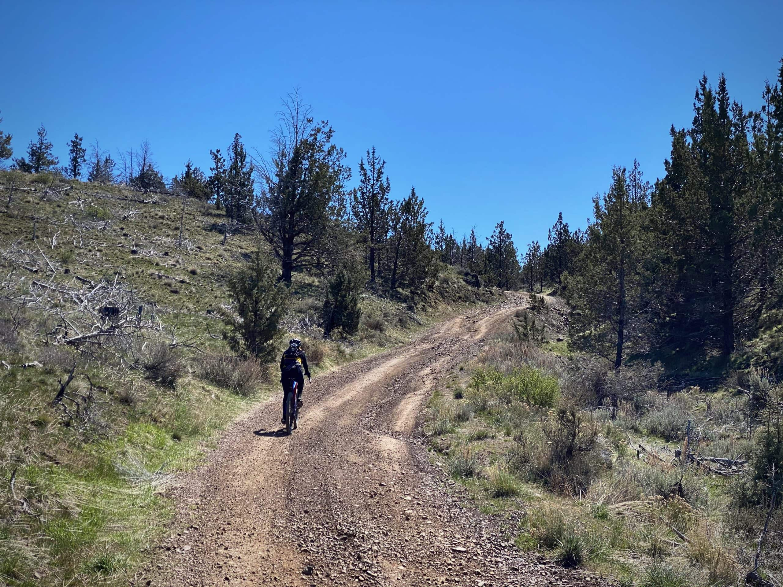 Cyclist nearing summit of Kings Gap spring in the Crooked River National Grassland near Madras, Oregon.