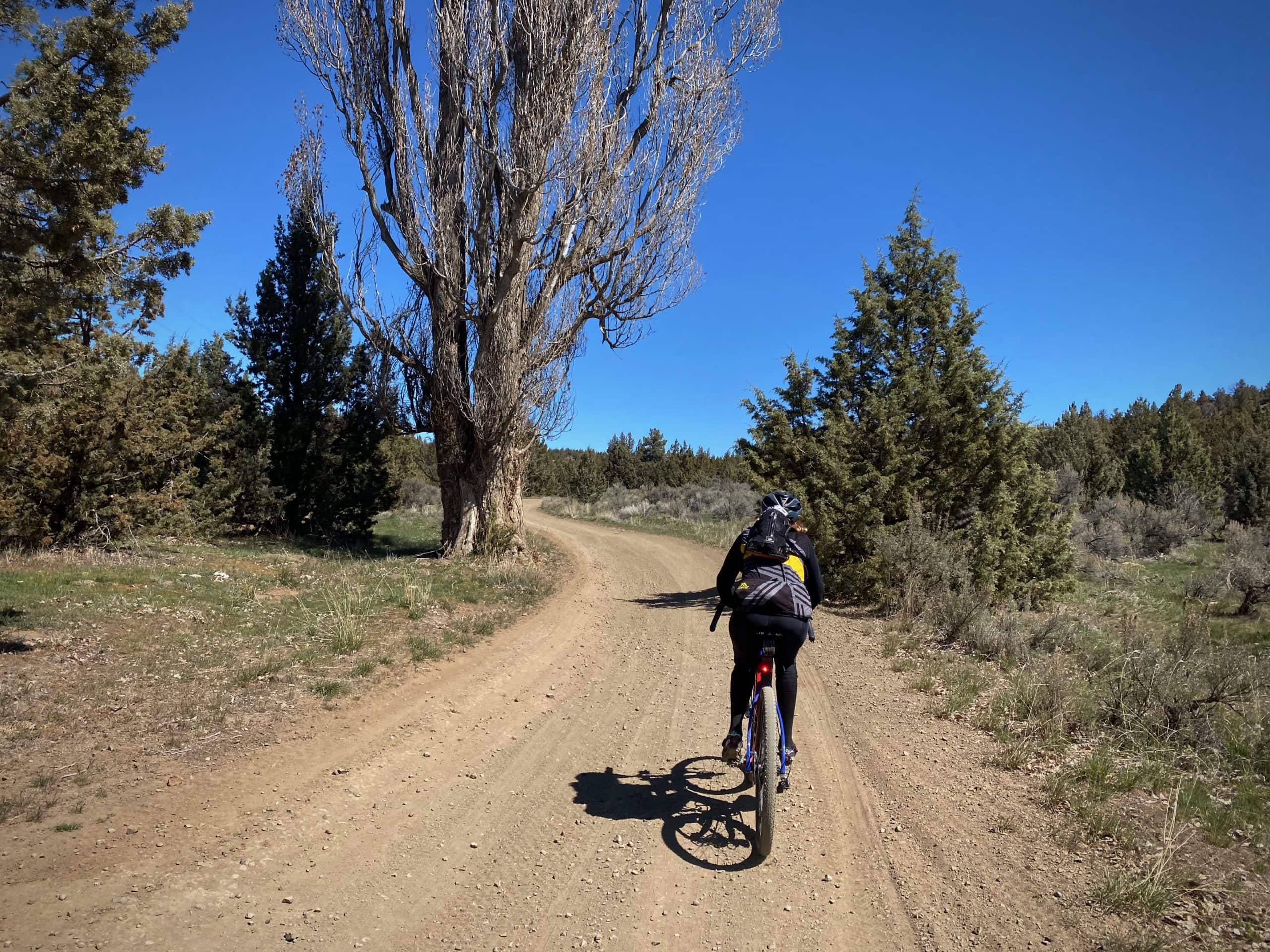 Gravel Girl on dirt road in the Crooked River National Grassland.