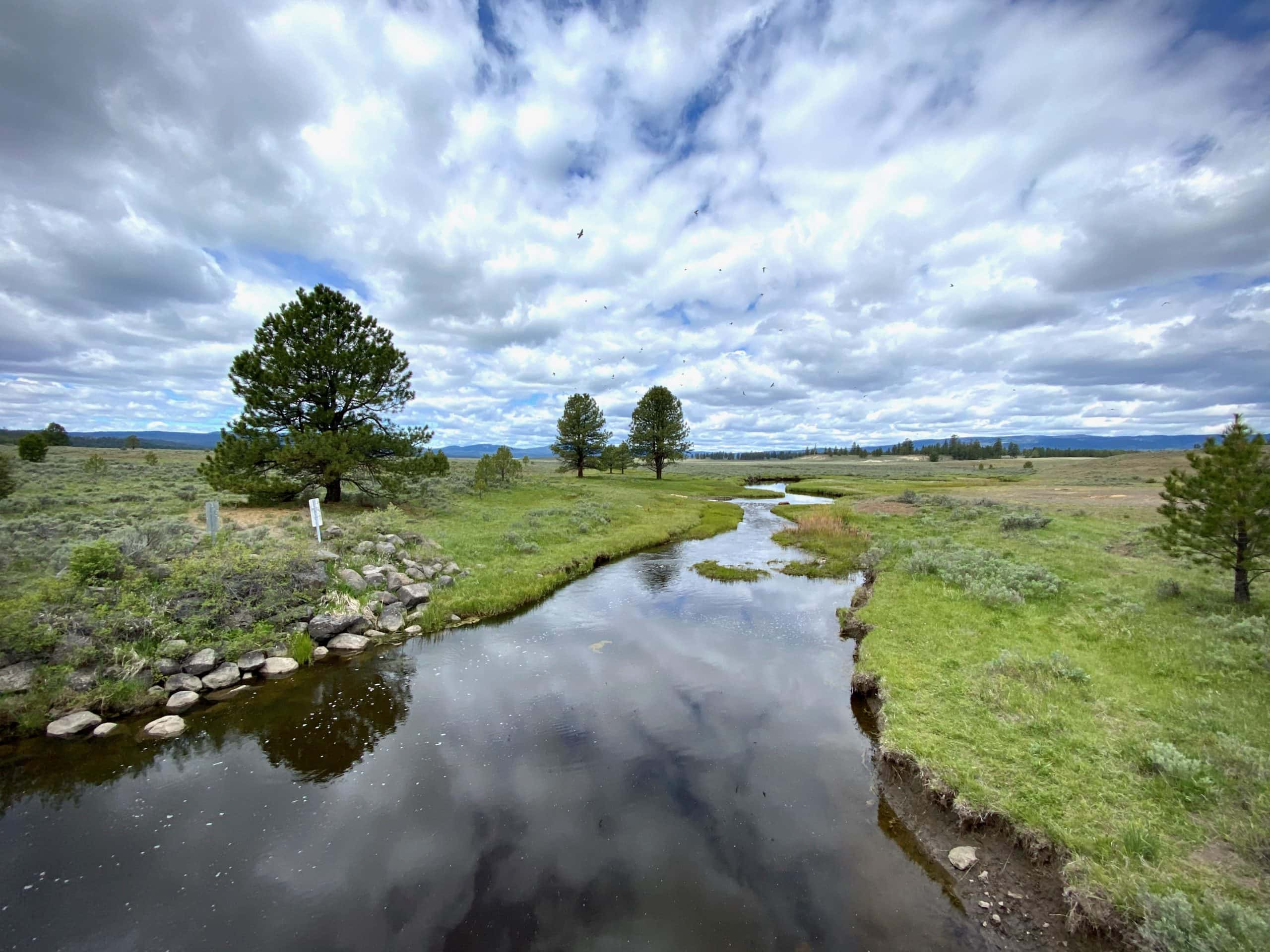 The North Fork of the Crooked river in Big Summit Prairie.