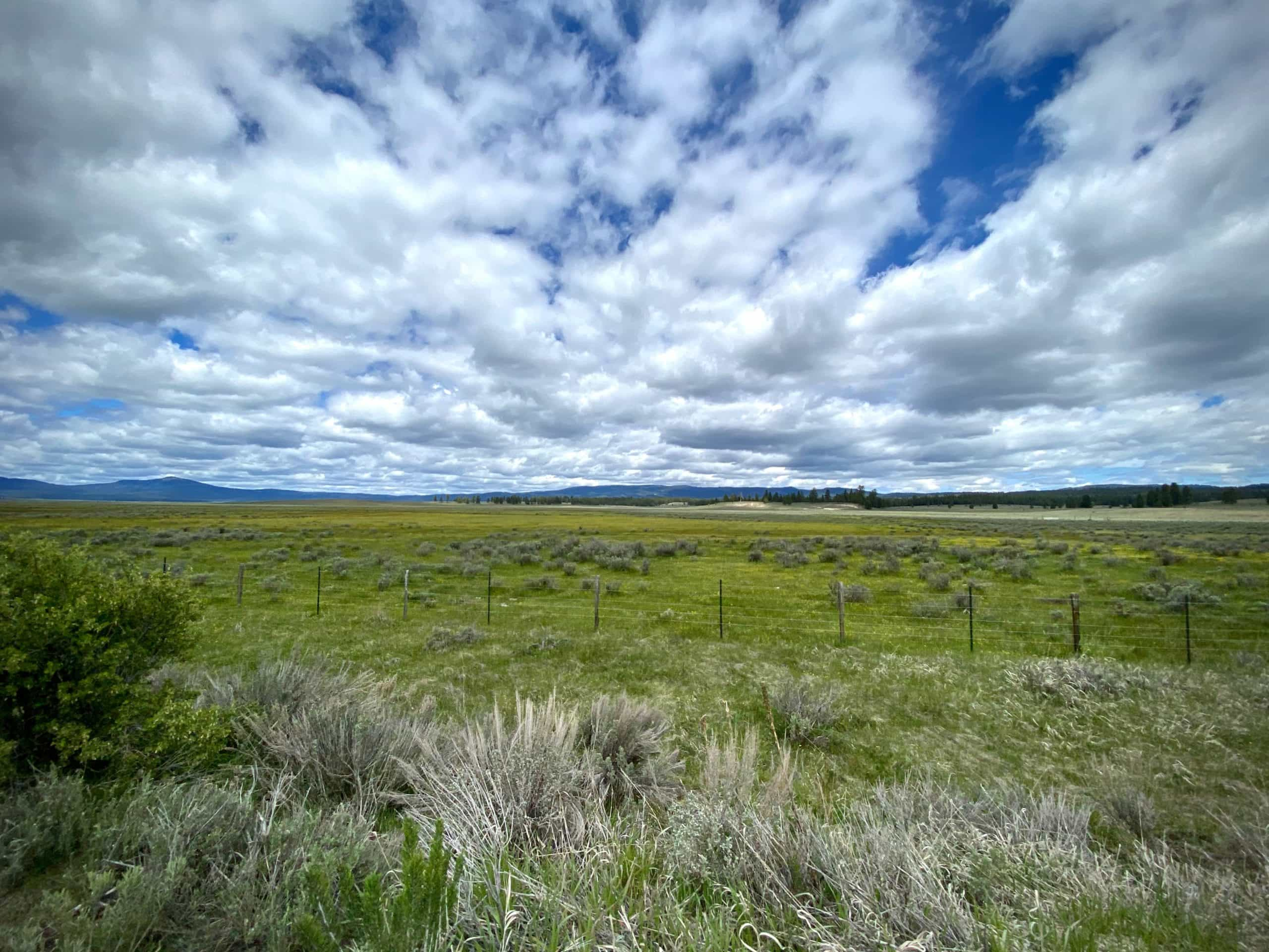 Sweeping view of Big Summit Prairie in Central Oregon.