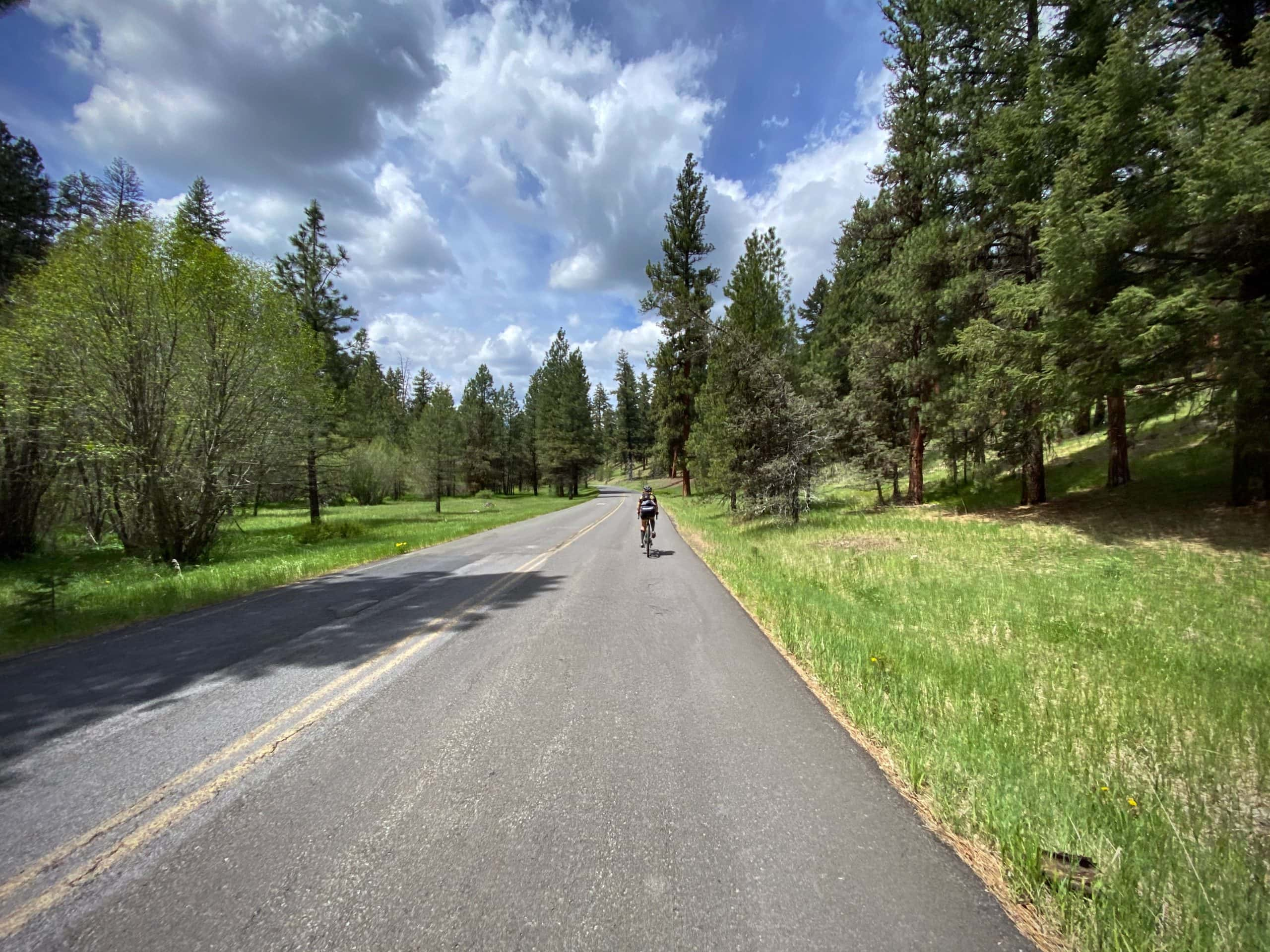 Cyclist on paved road with forest and mountain meadows in the Ochoco National forest.