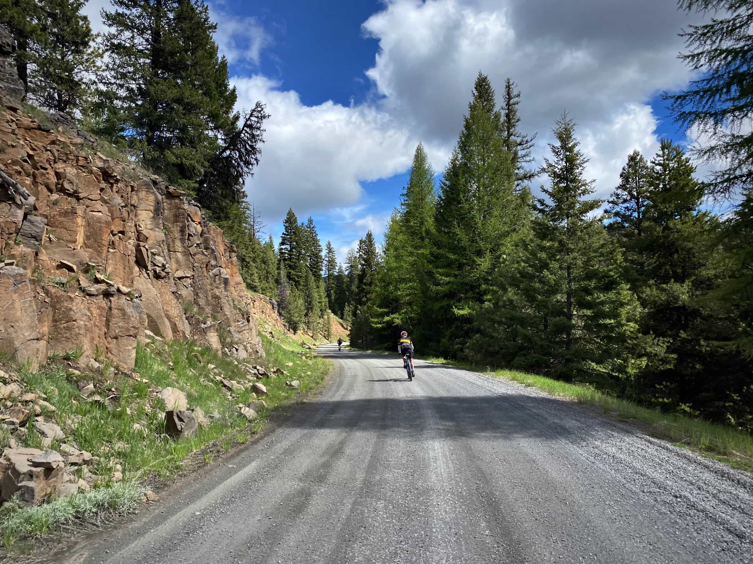Gravel cyclists descending hill on NF-22 in the Ochoco mountains near Prineville, Oregon.