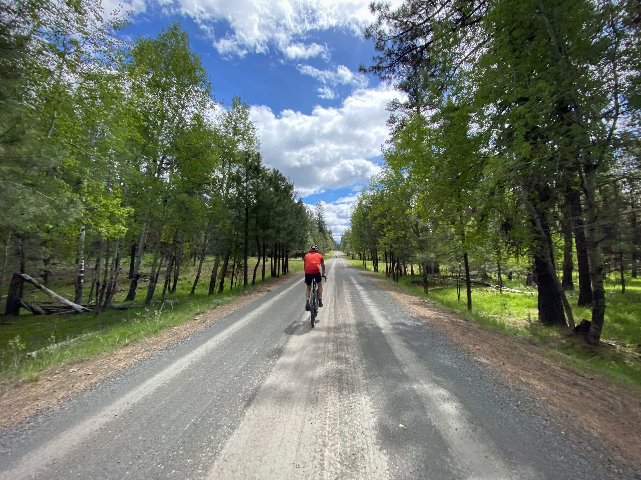 Cyclist riding between a stand of Aspen trees on the northern edge of Big Summit Prairie.