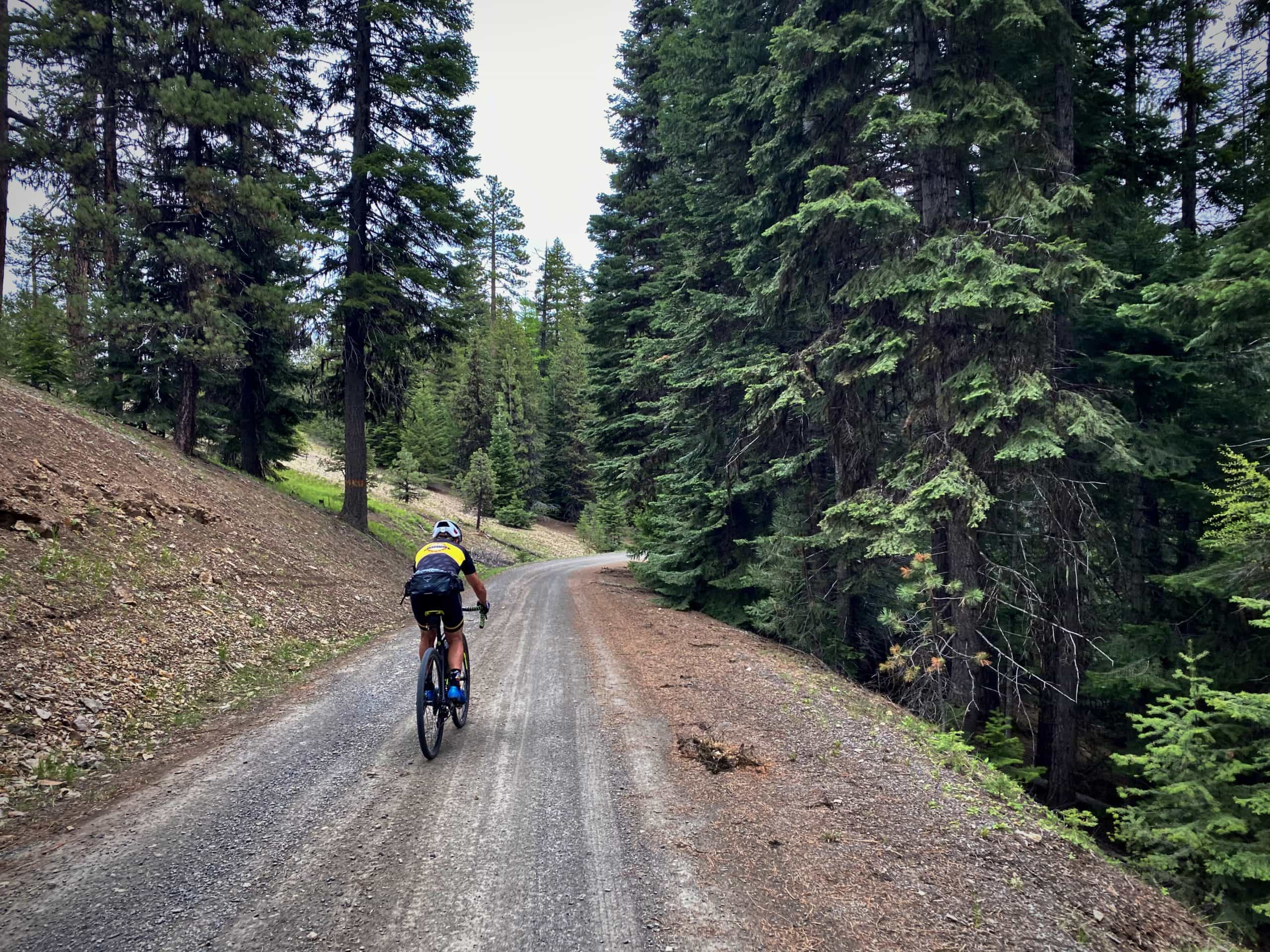 Cyclist on gravel road descending from Scott's Corner in the Ochoco National forest.
