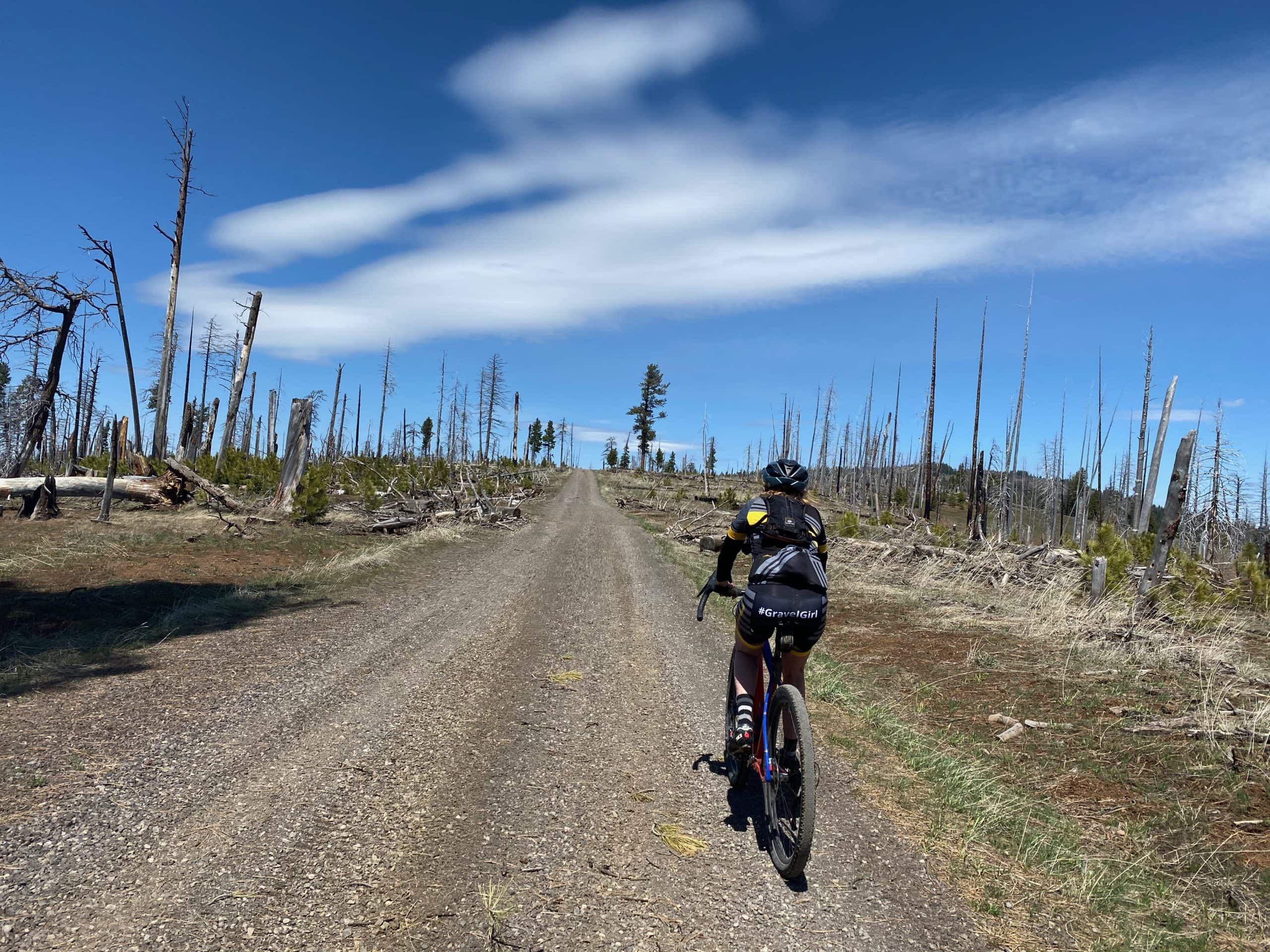 Cyclist on gravel road near the Black Canyon Wilderness area in the Ochoco National forest.