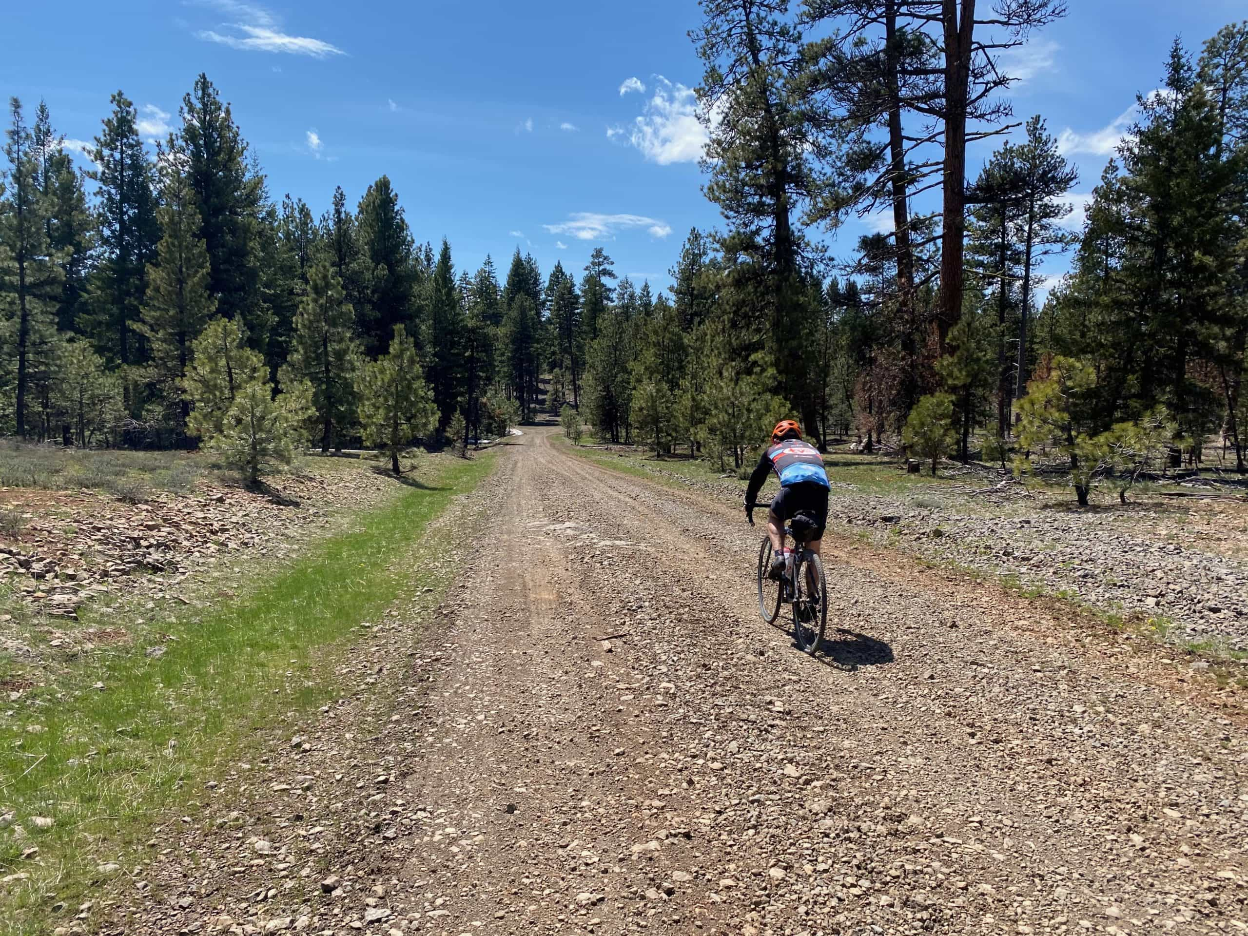 Gravel cyclist on a more primitive road in the high country of the Ochoco mountains near Prineville, OR.