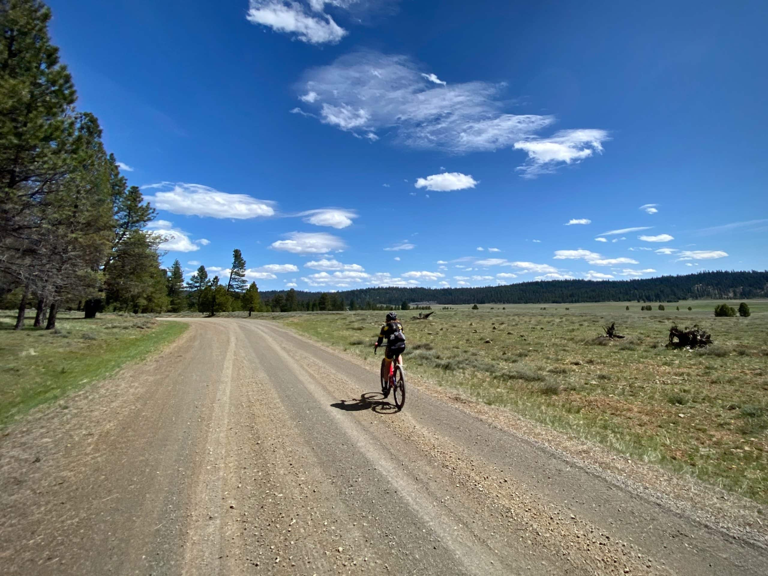 Gravel cyclist riding past Little Summit Prairie in the Ochoco National forest.
