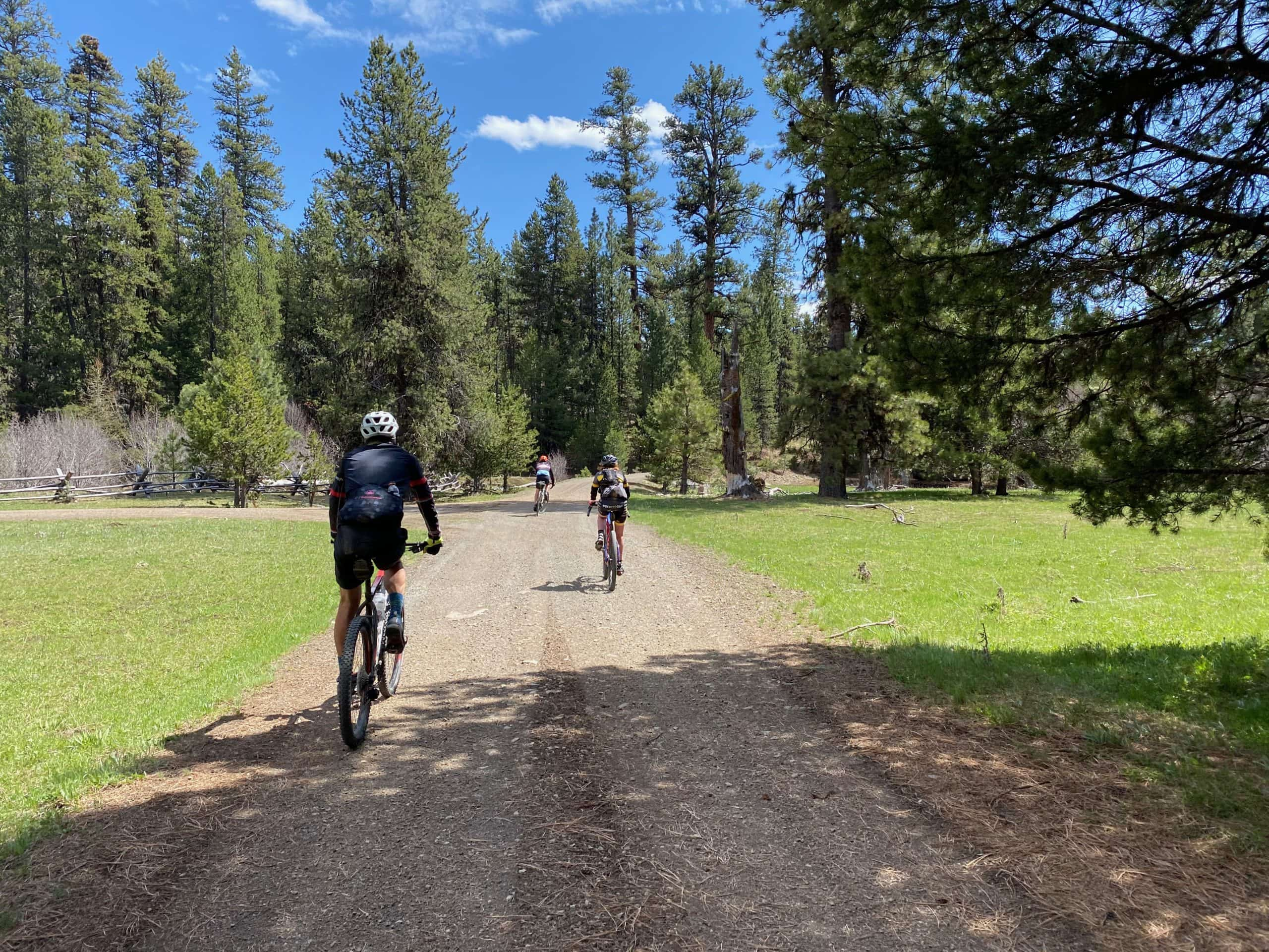 Several gravel cyclist riding across Little Summit creek in the Ochoco National forest.