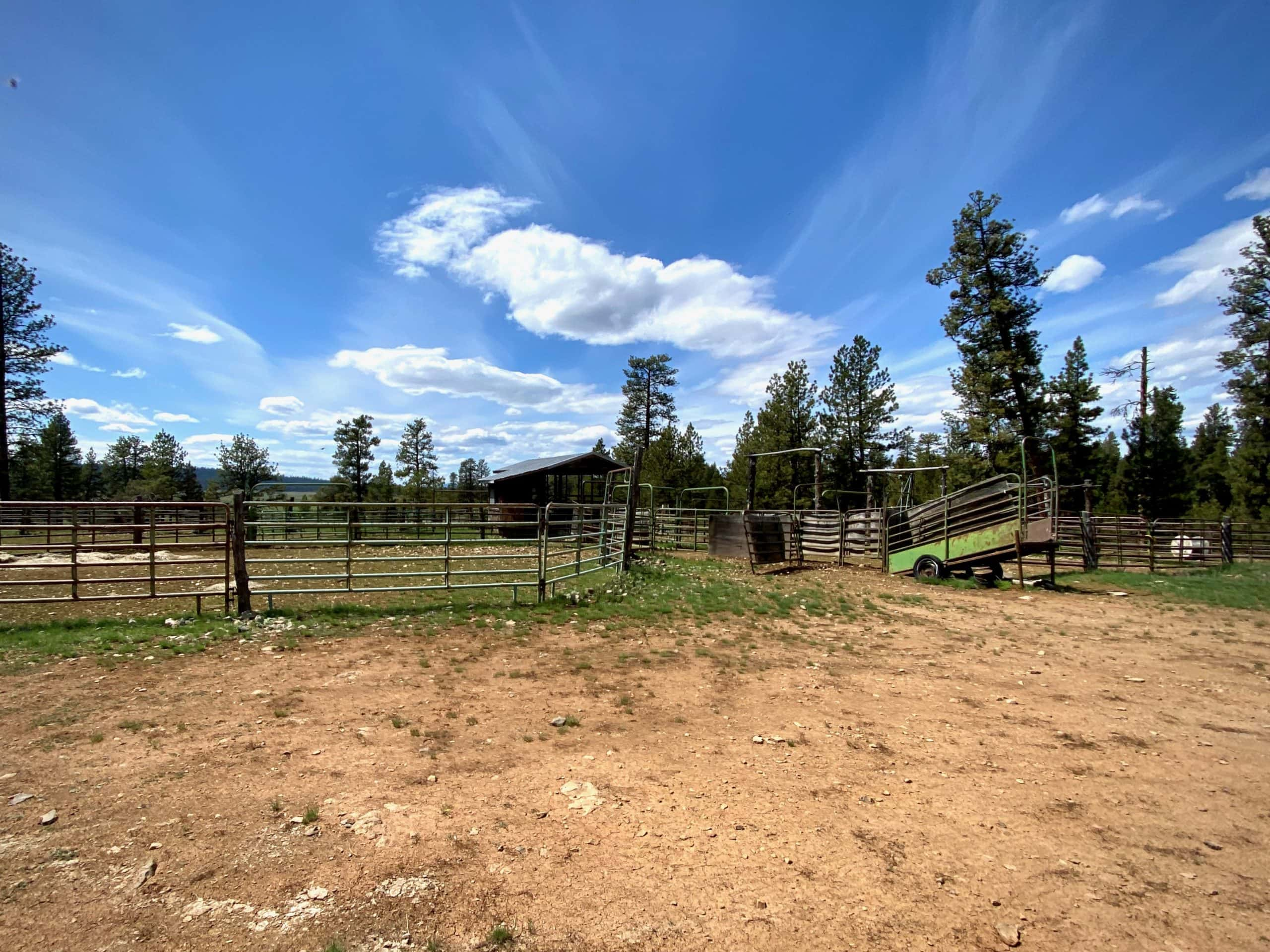 Corrals along Little Summit Prairie in the Ochoco National forest near Paulina, OR.