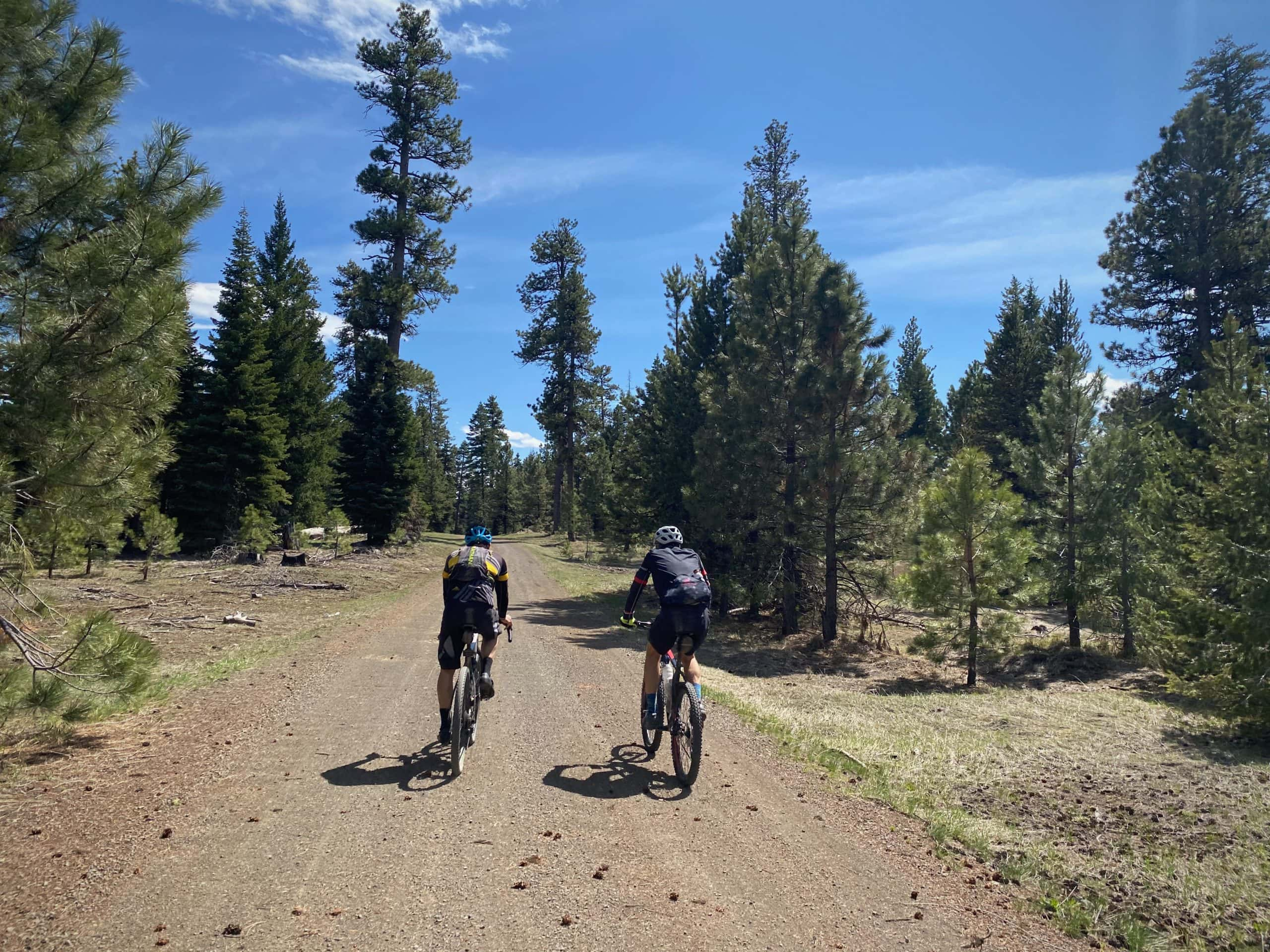 Cyclists on small climb leaving Little Summit Prairie in the Ochoco National forest.