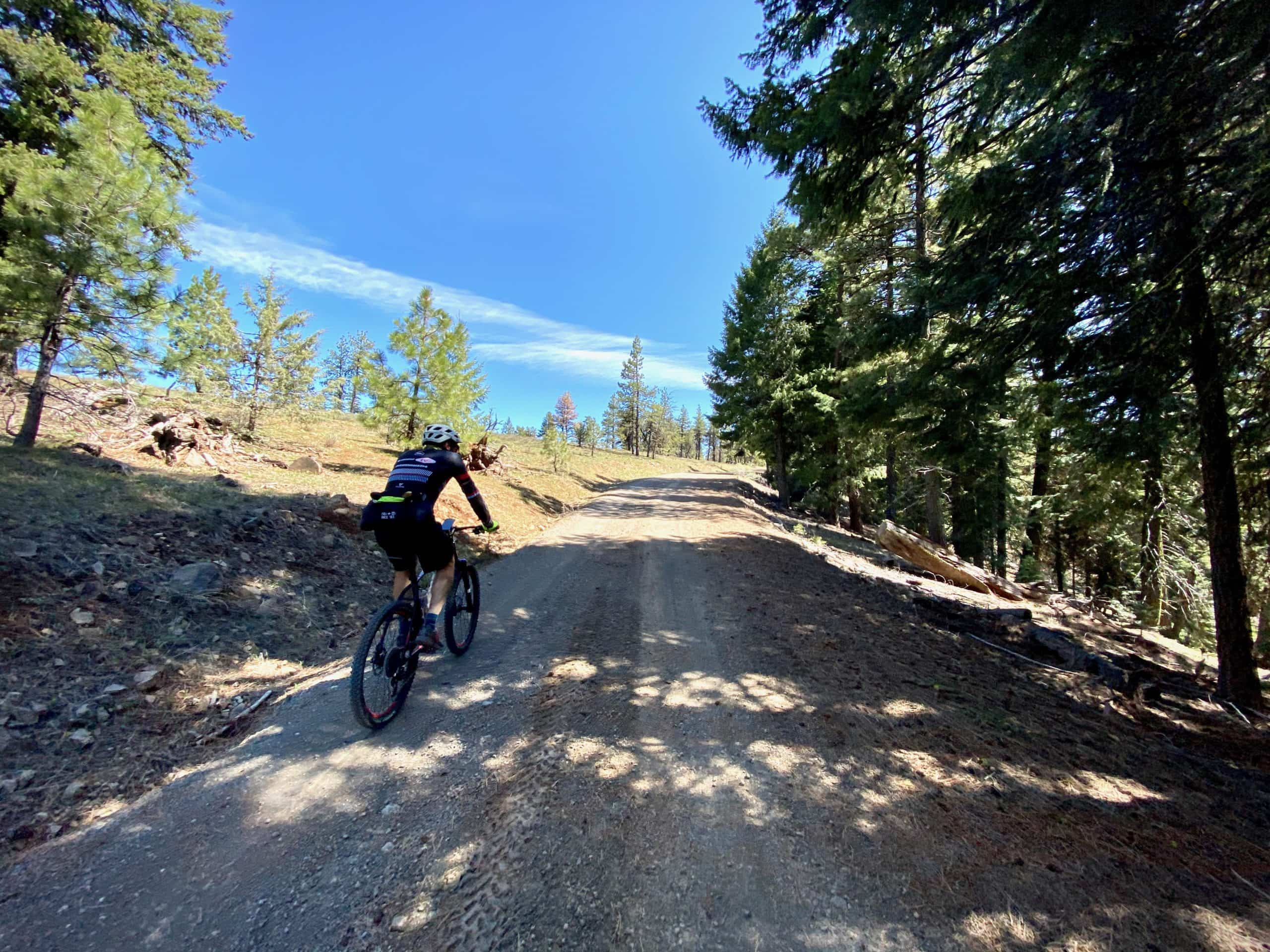 Cyclist on gravel road near Wolf mountain in the Ochoco National forest near Bend, OR.