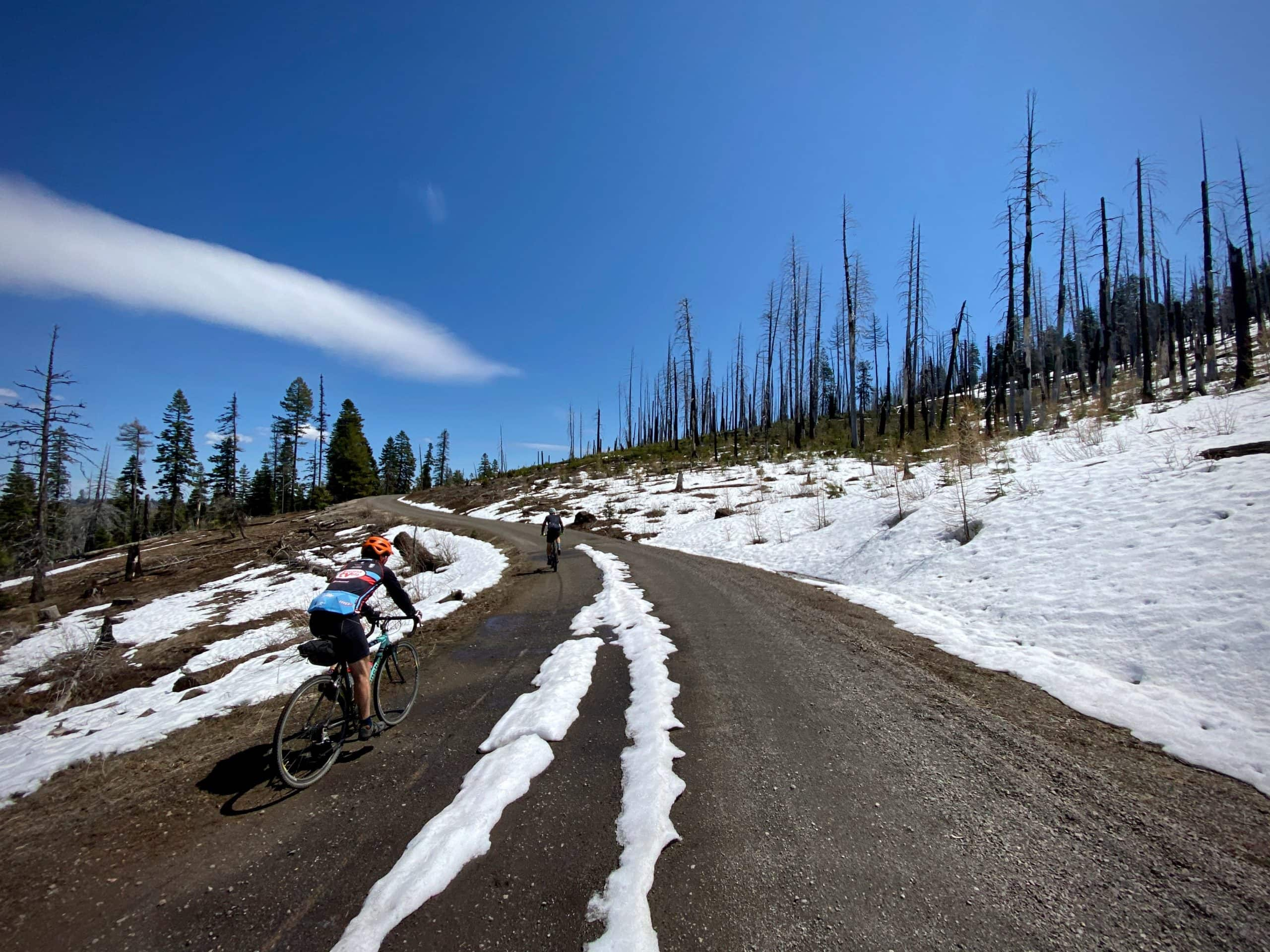 Gravel cyclist near Wolf Mountain with burned trees and snow near Paulina, OR.