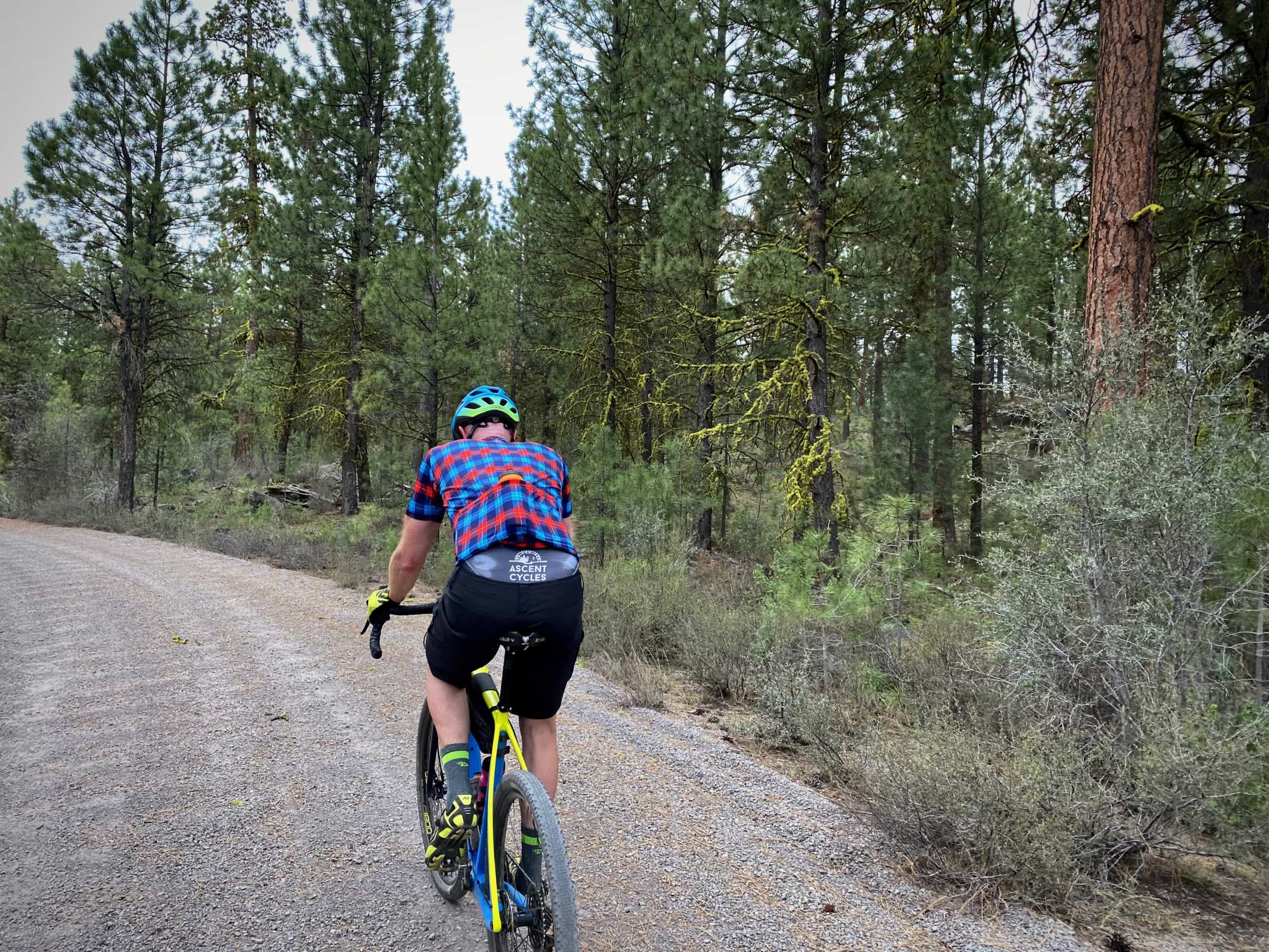 Cyclist riding National Forest Service road in the lower Ochoco National Forest in Harney County, Oregon.