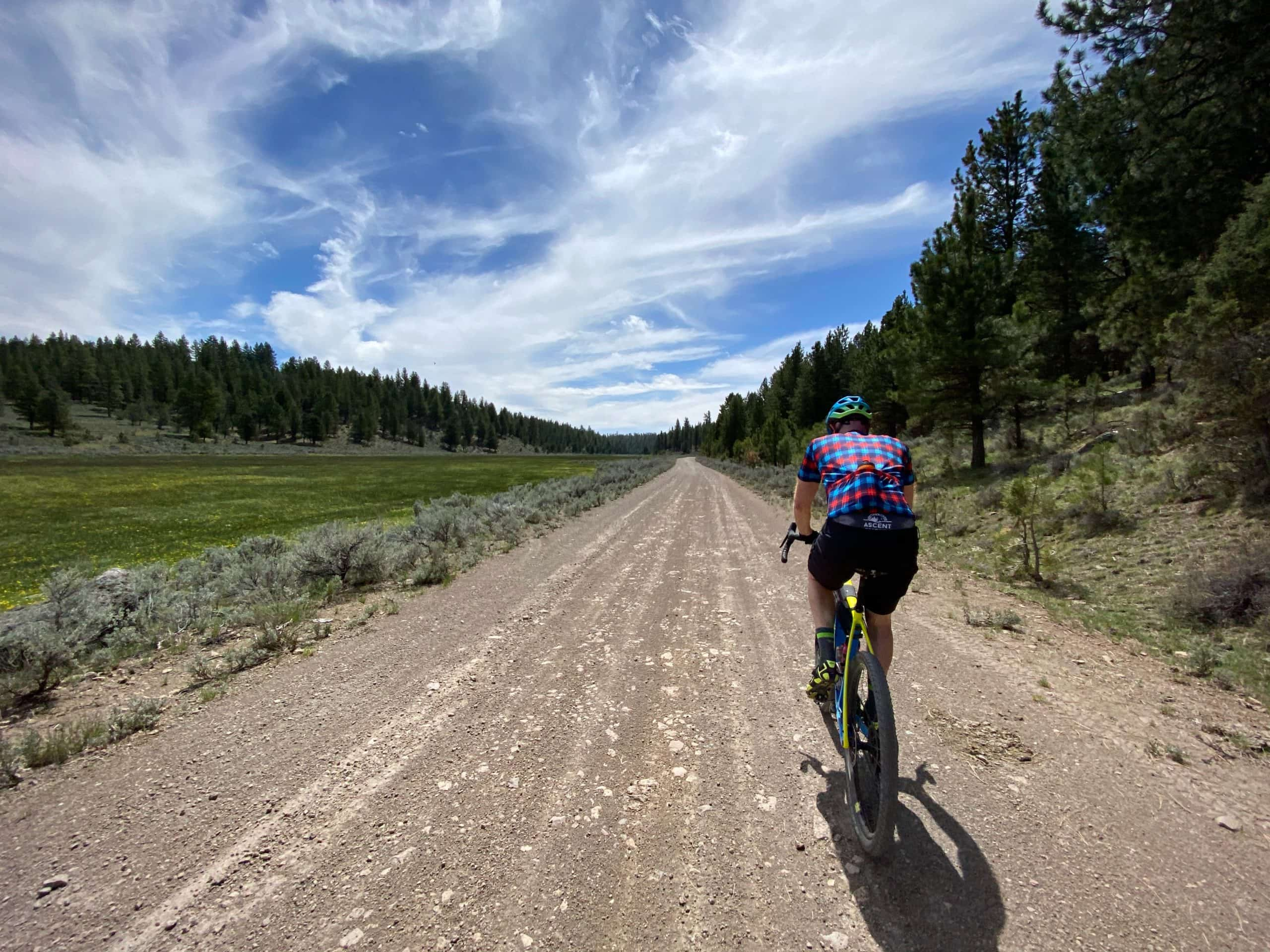 Gravel cyclist on flat, fast gravel road in the Ochoco National forest near Egypt Canyon.
