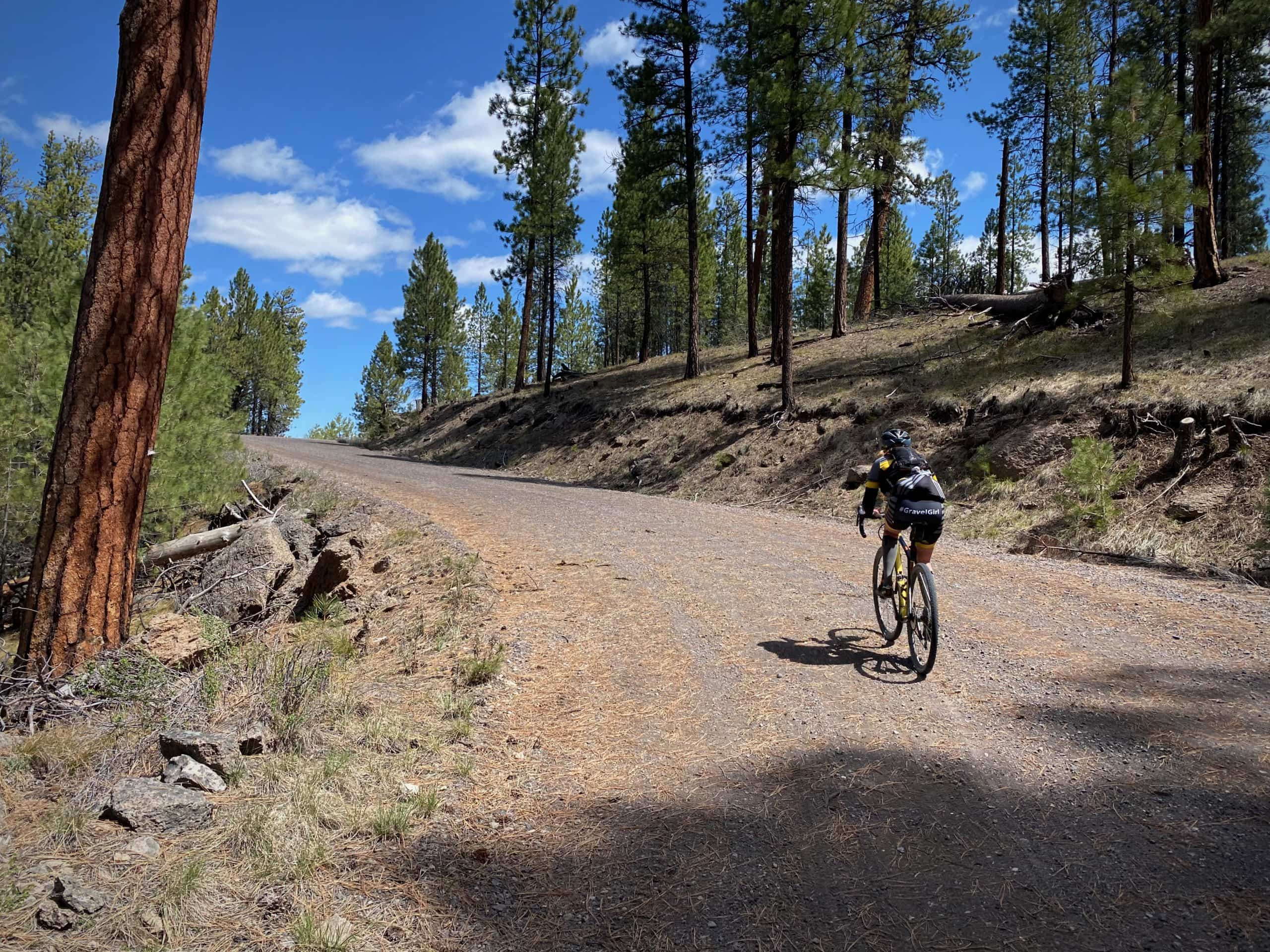 Woman gravel cyclist on forest service road NF in the Ochoco National forest.