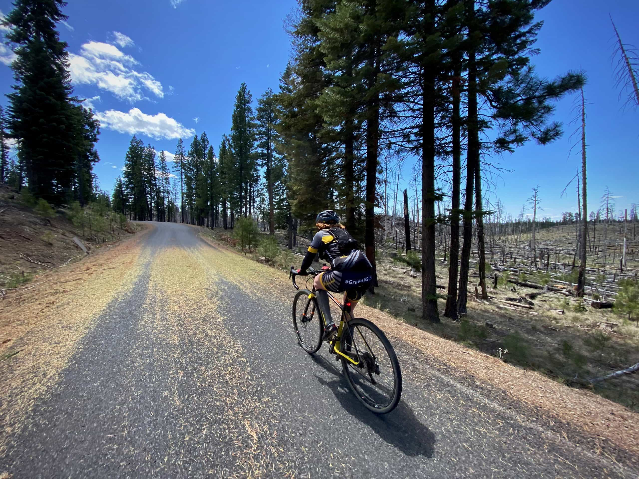 Cyclist on paved NF 41 road near Delintment Lake near Burns, OR.