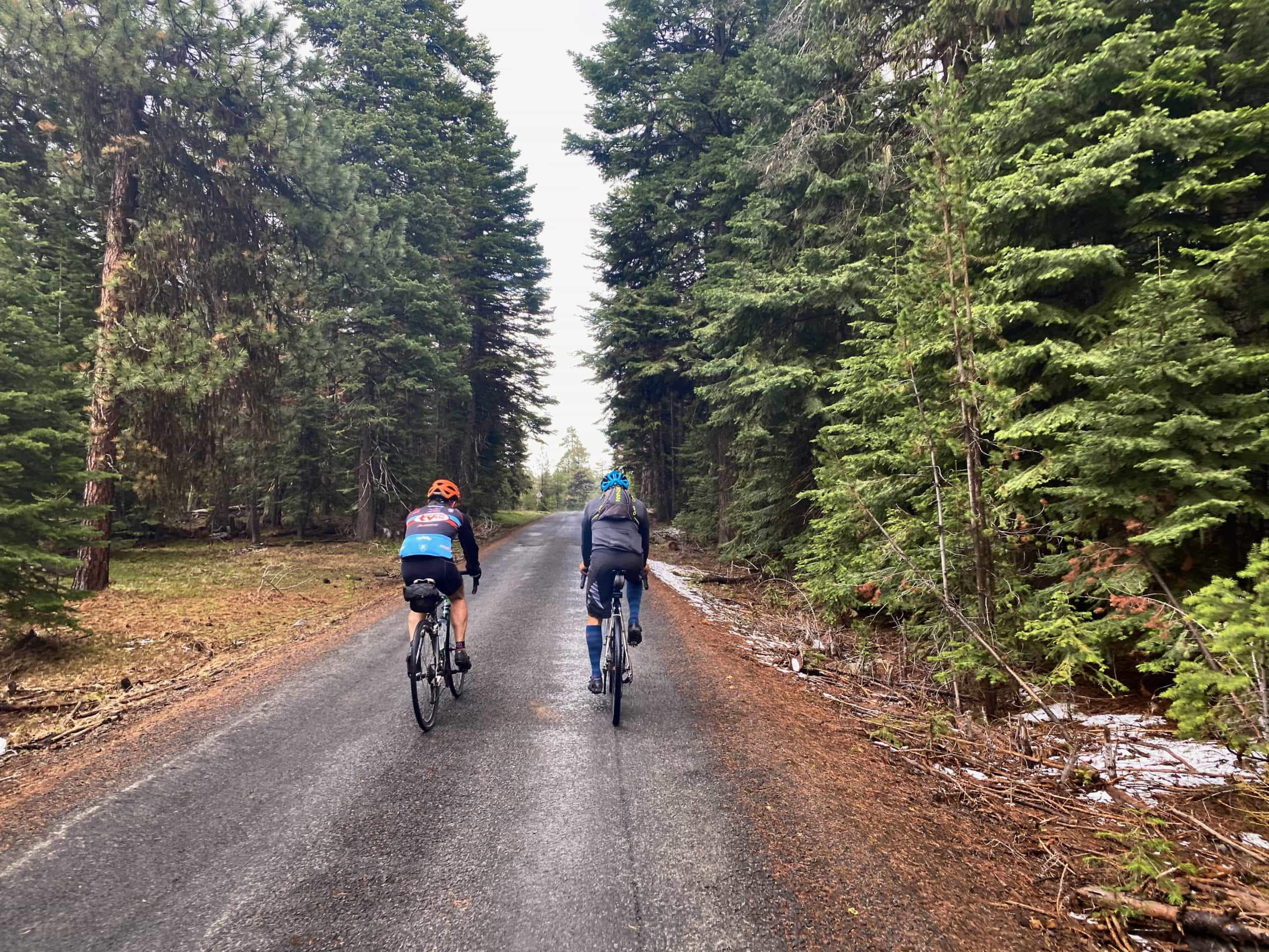 Two gravel cyclists summiting the climb on NF-12 in the Ochoco Mountains.