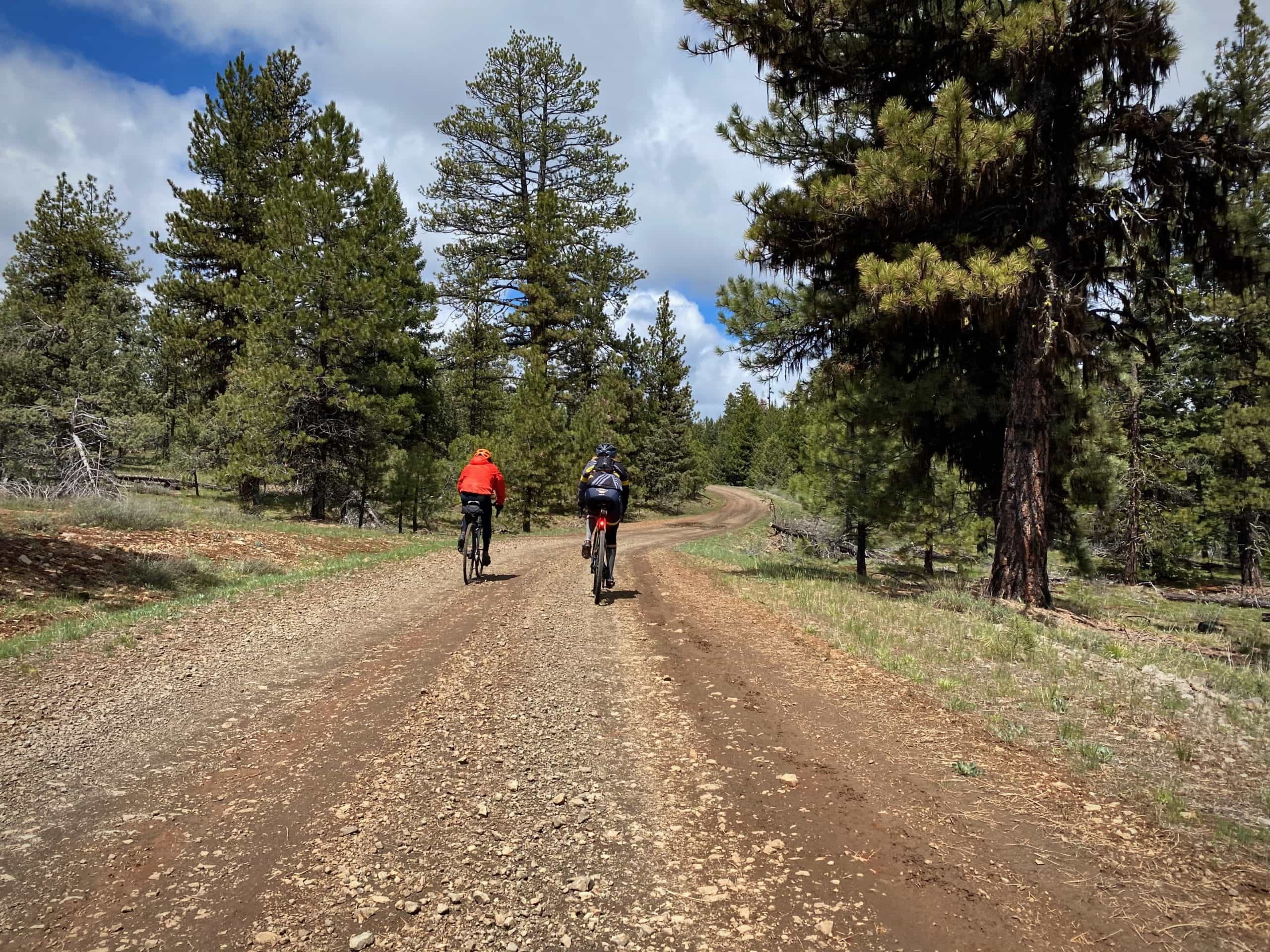 Gravel cyclists on primitive and rough gravel / dirt road in the Ochoco National forest near Mitchell, OR.
