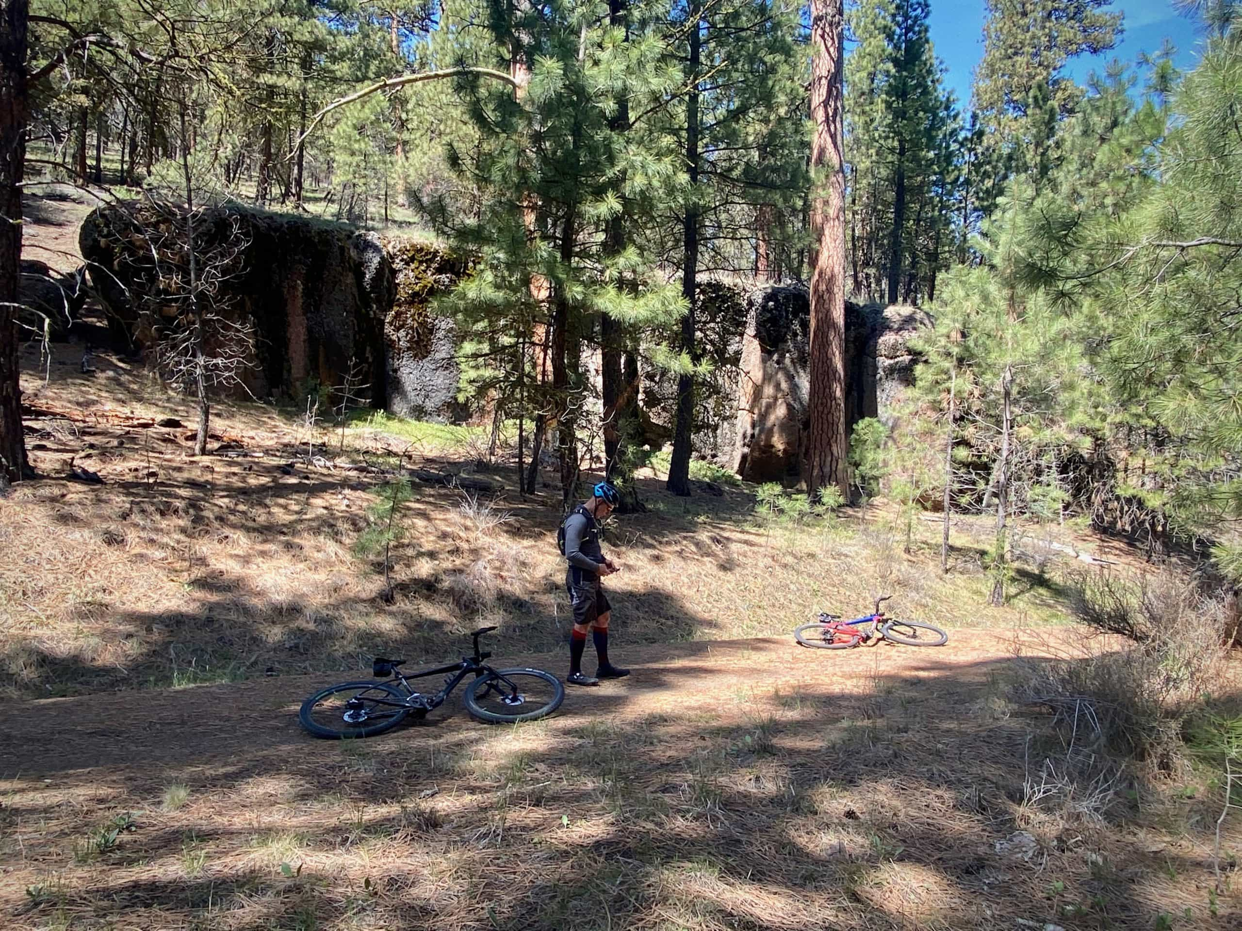 Gravel cyclist checking navigation on Wahoo Roam device in Ochoco National Forest.