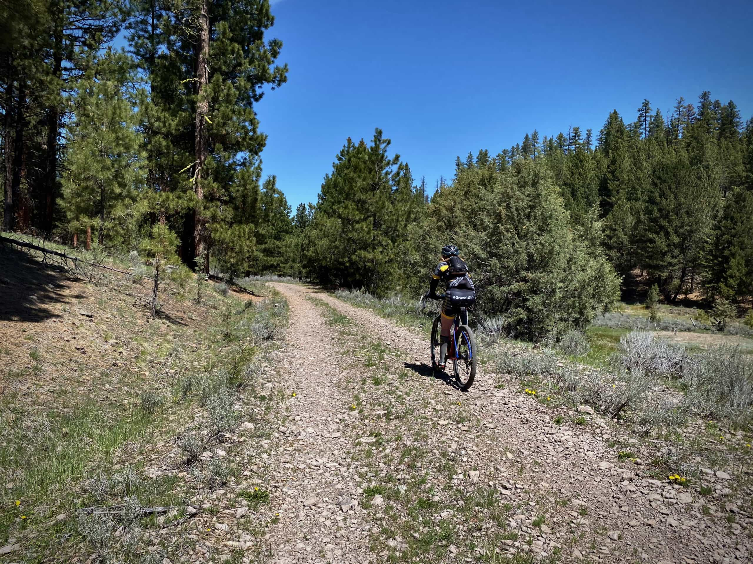 Cyclist riding primitive gravel road with some gnar in the Ochoco National Forest near Burns, Oregon.
