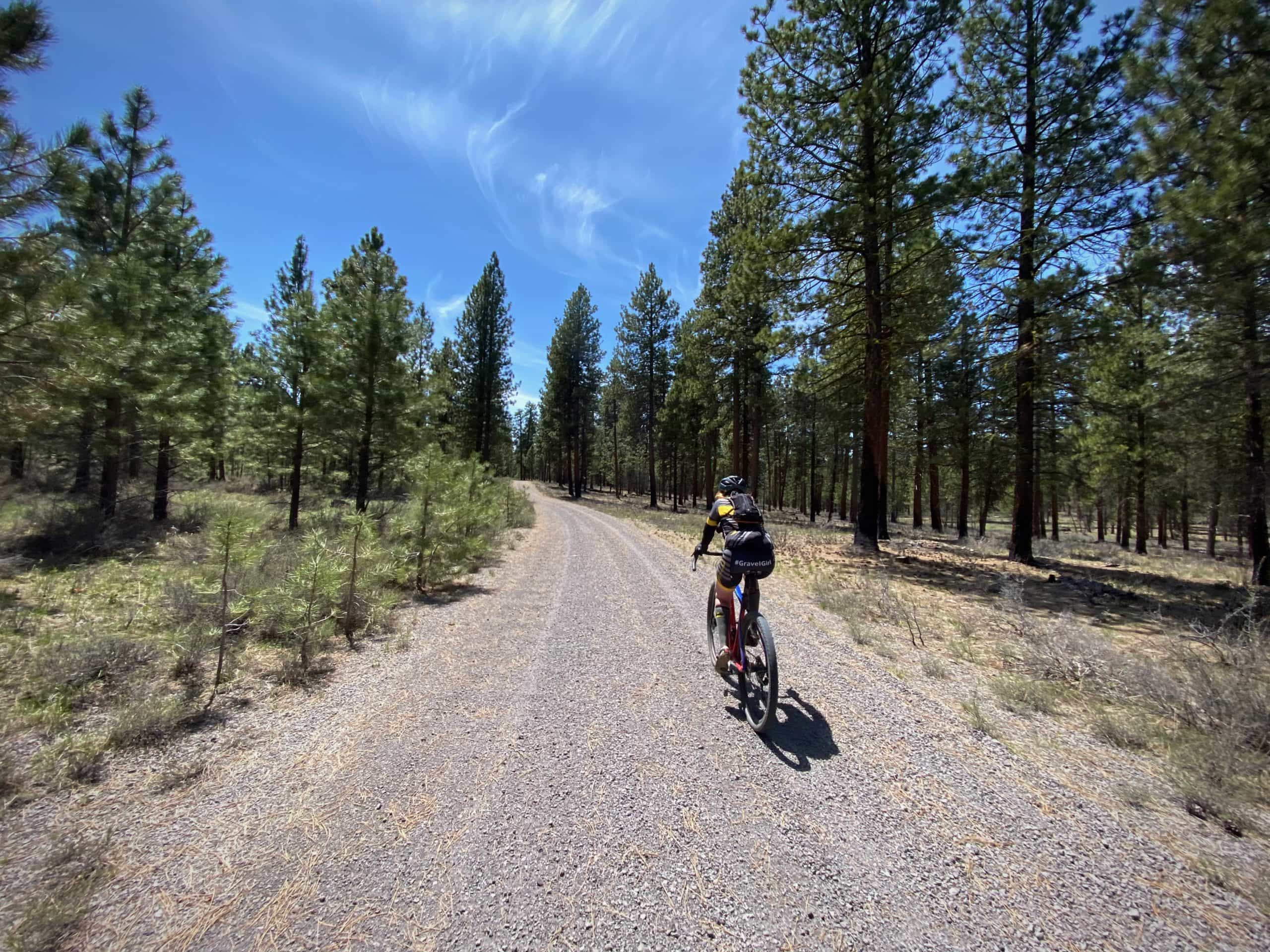 Cyclist on gravel road in the Ochoco National forest near Burns, OR.