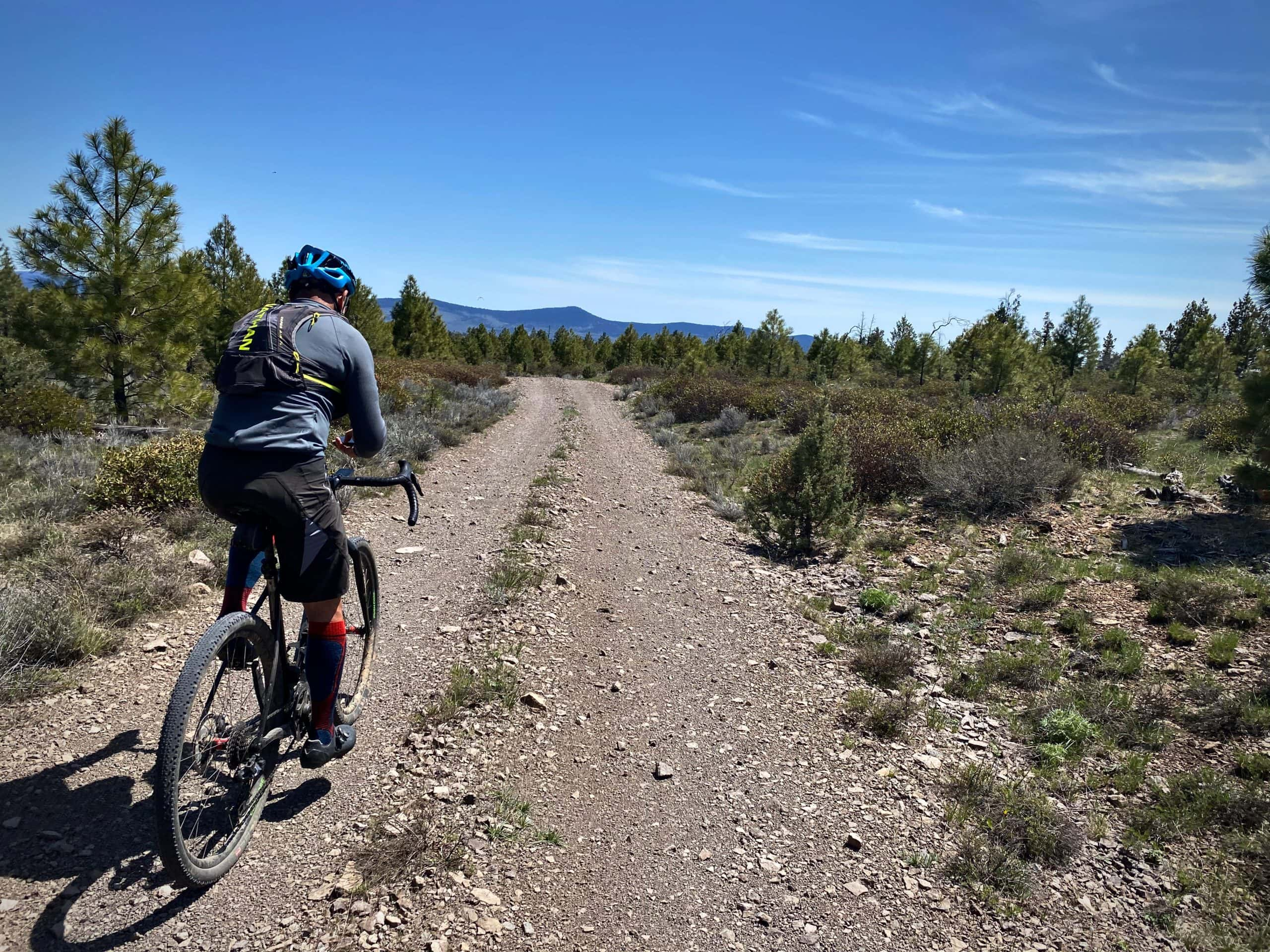 Cyclist riding National Forest Service road with Dry Mountain in the distance.