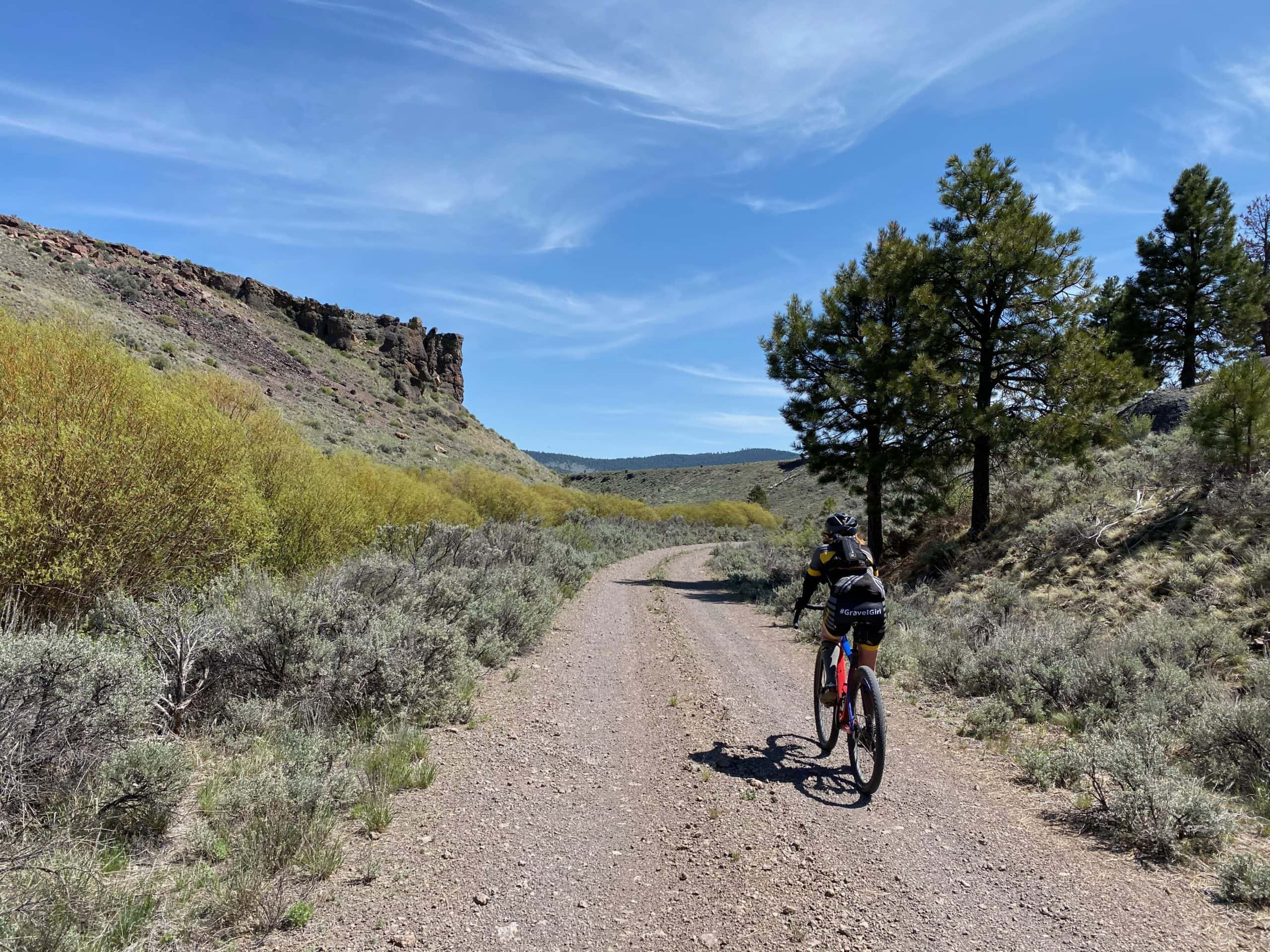 Cyclist riding forest service road through pseudo canyon along Dairy Creek in the Ochoco National Forest.