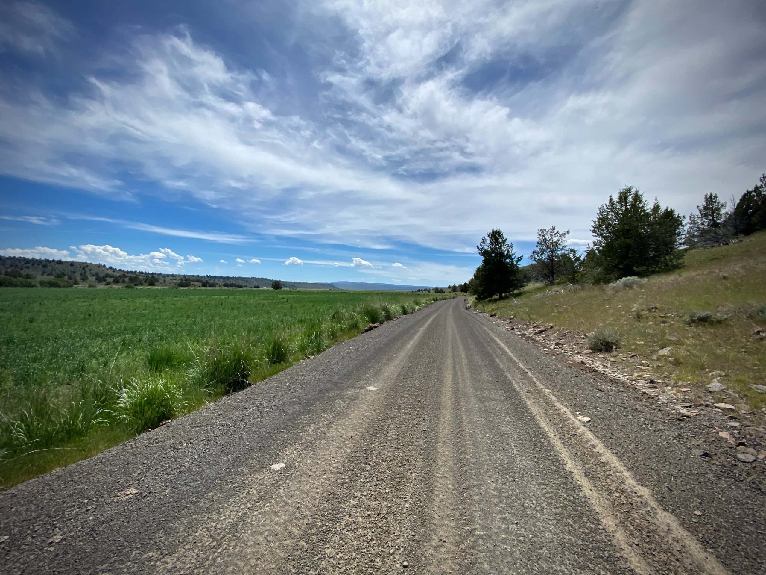 Gravel road leading into Paulina valley with green grasses.