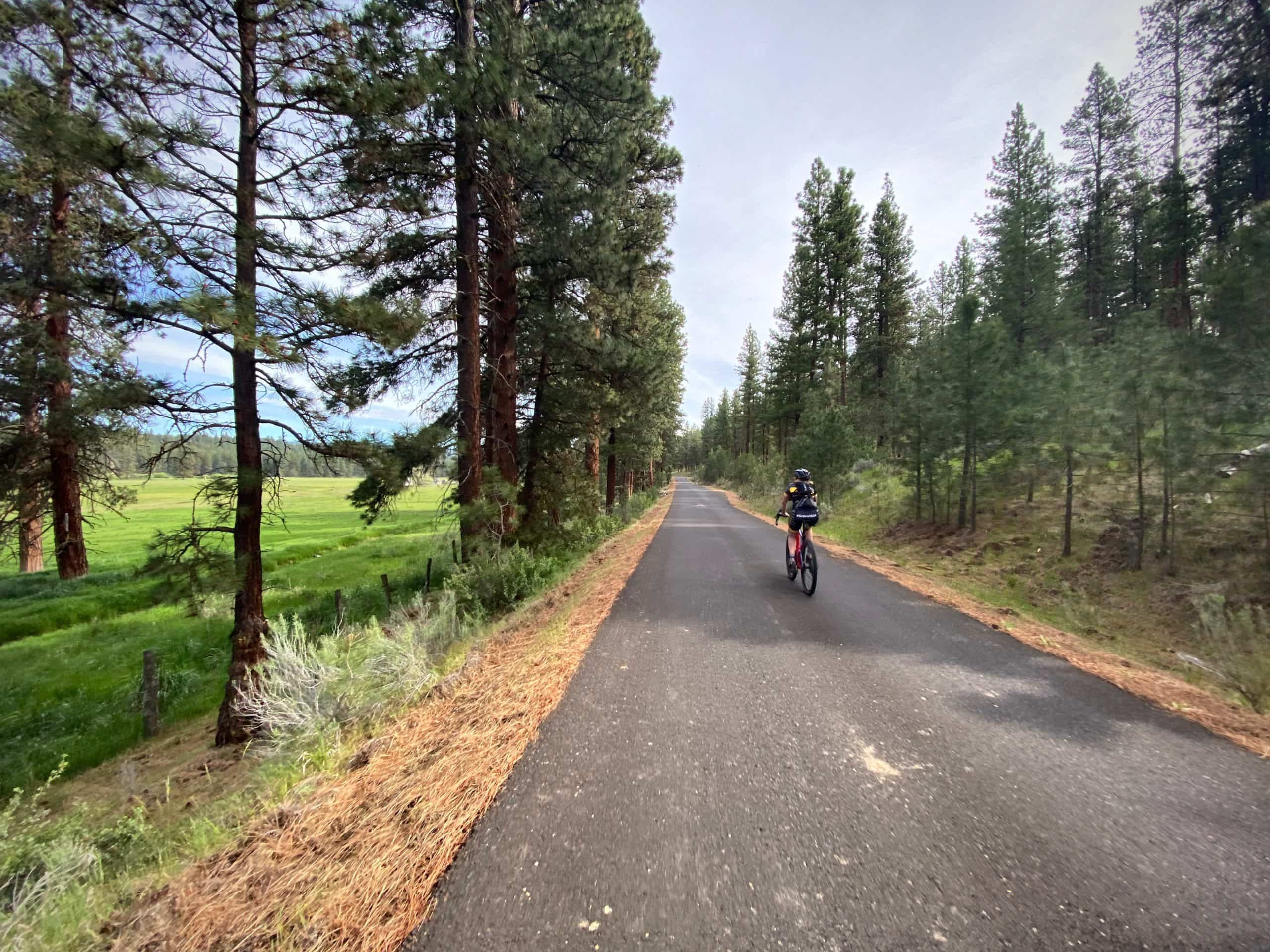 Cyclist on the the one lane paved road NF-42 near Salter's Cabin in the Ochoco National forest.