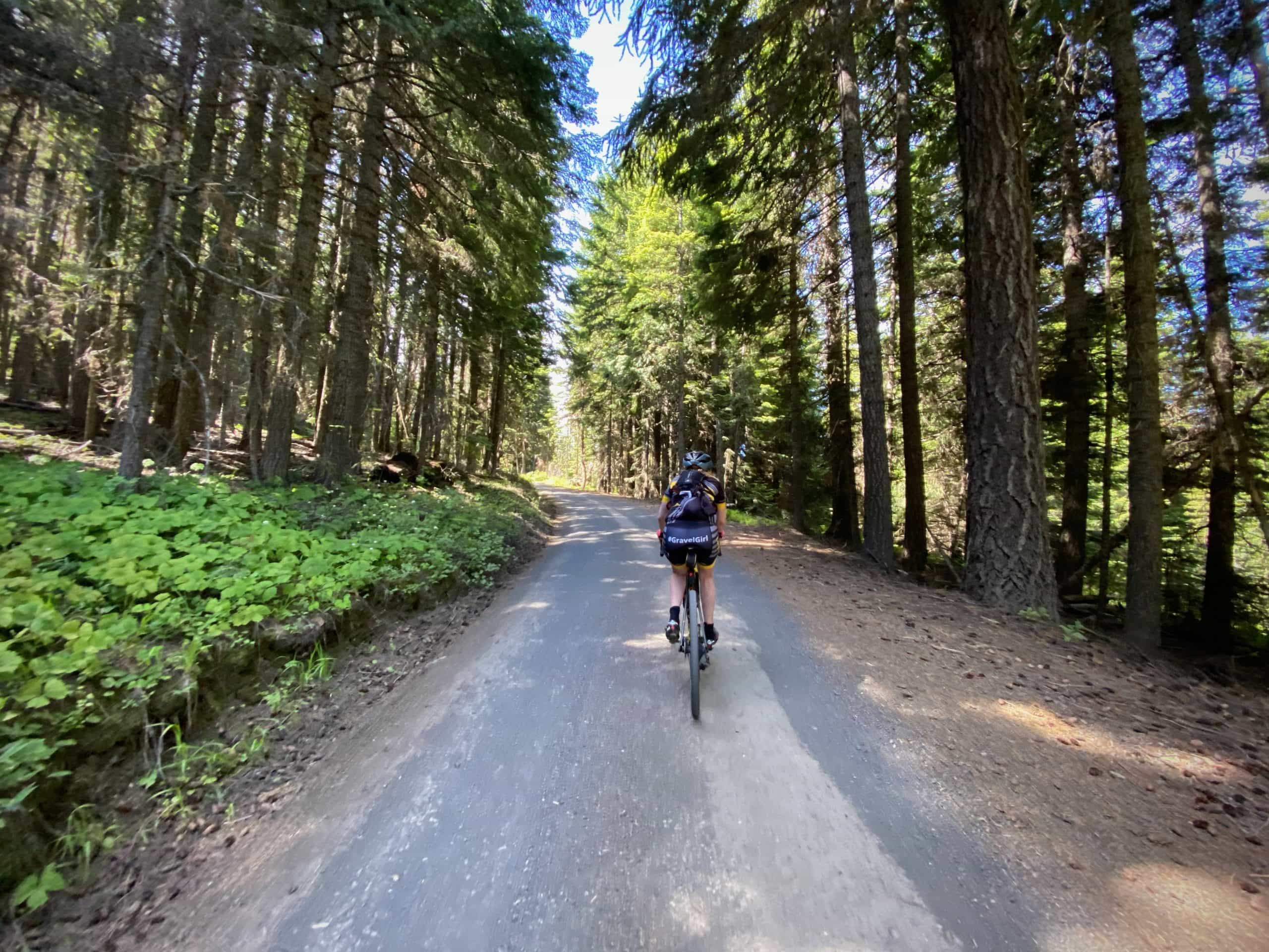 Gravel Girl riding up hill, in forest on Lookout Mountain road near Dufur, Oregon.
