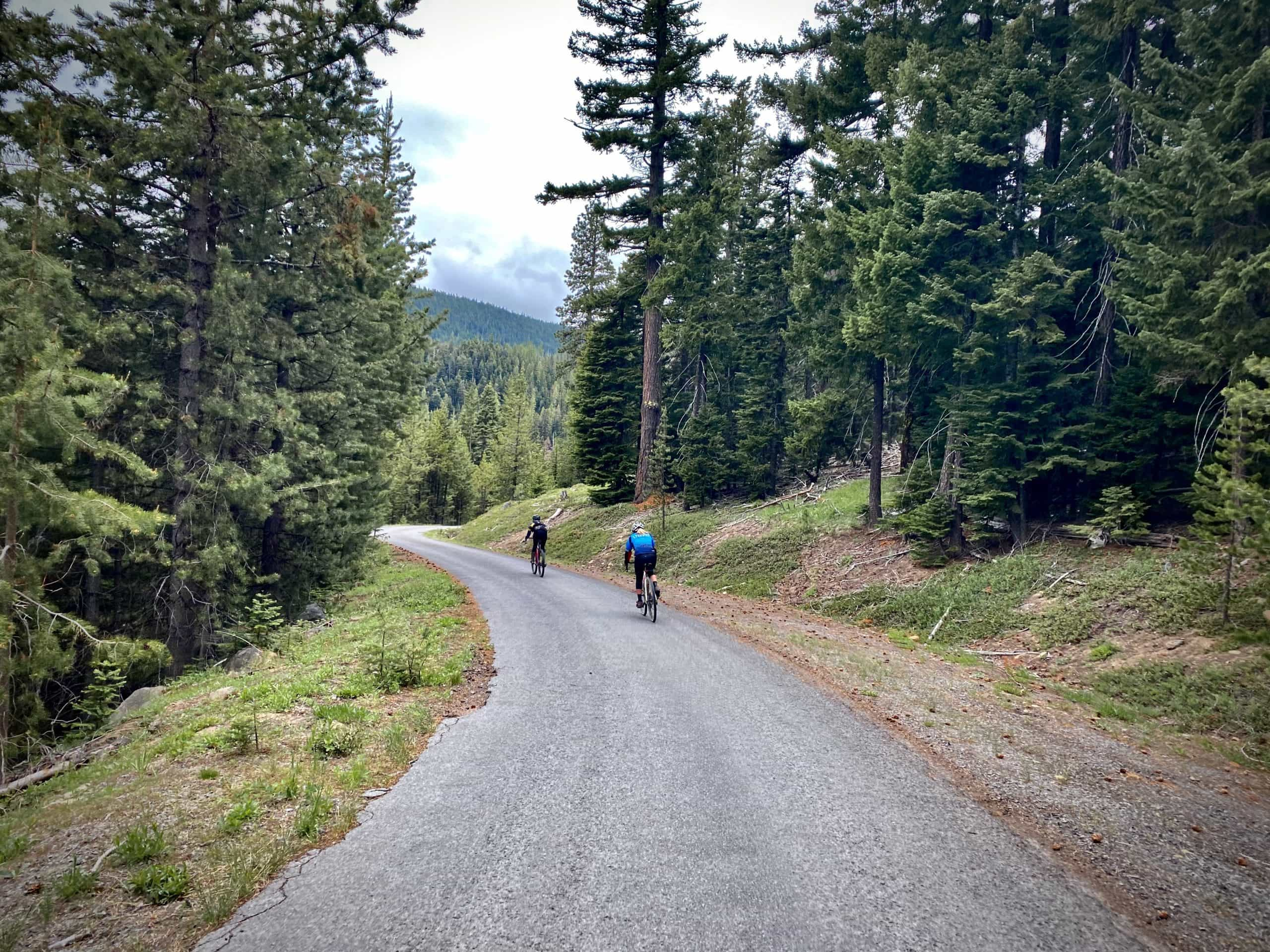 Two women cyclists descending NF 4420 paved road near Dufur, Oregon.