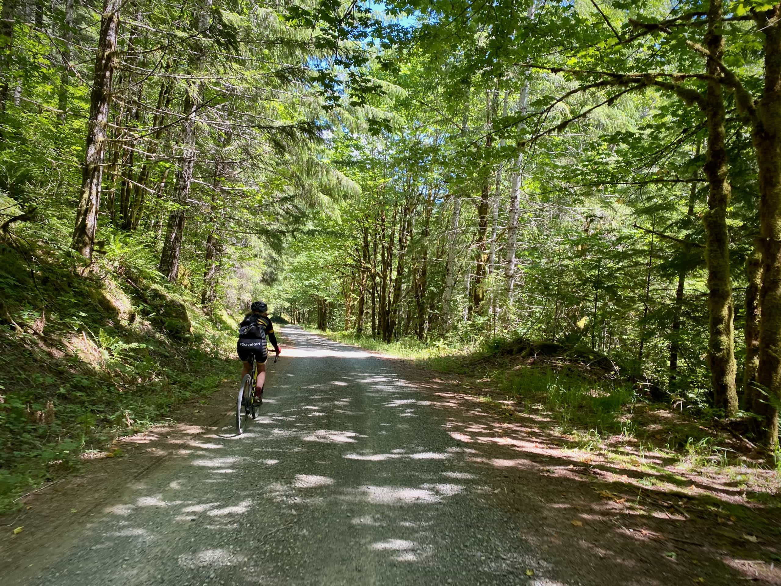 Gravel cyclist riding along Tidbits creek in the Willamette National Forest.