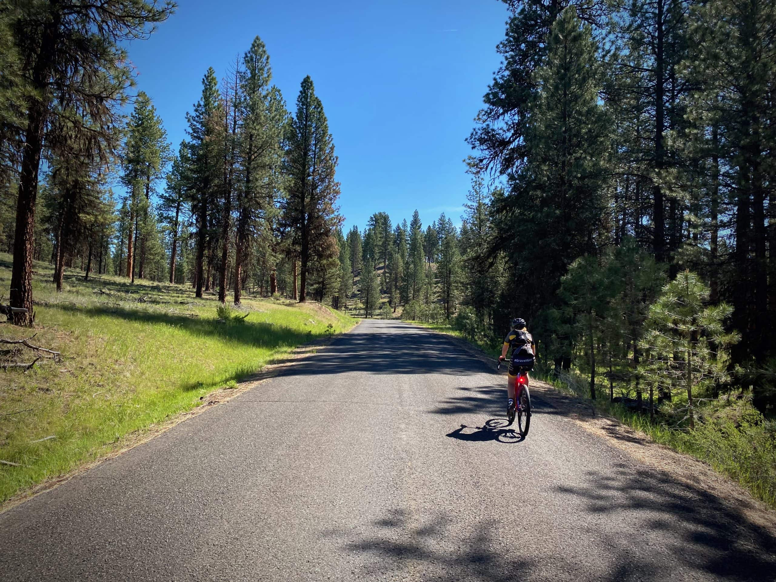 Cyclist on paved Forest Service road in the Ochoco National forest near Paulina, Oregon.