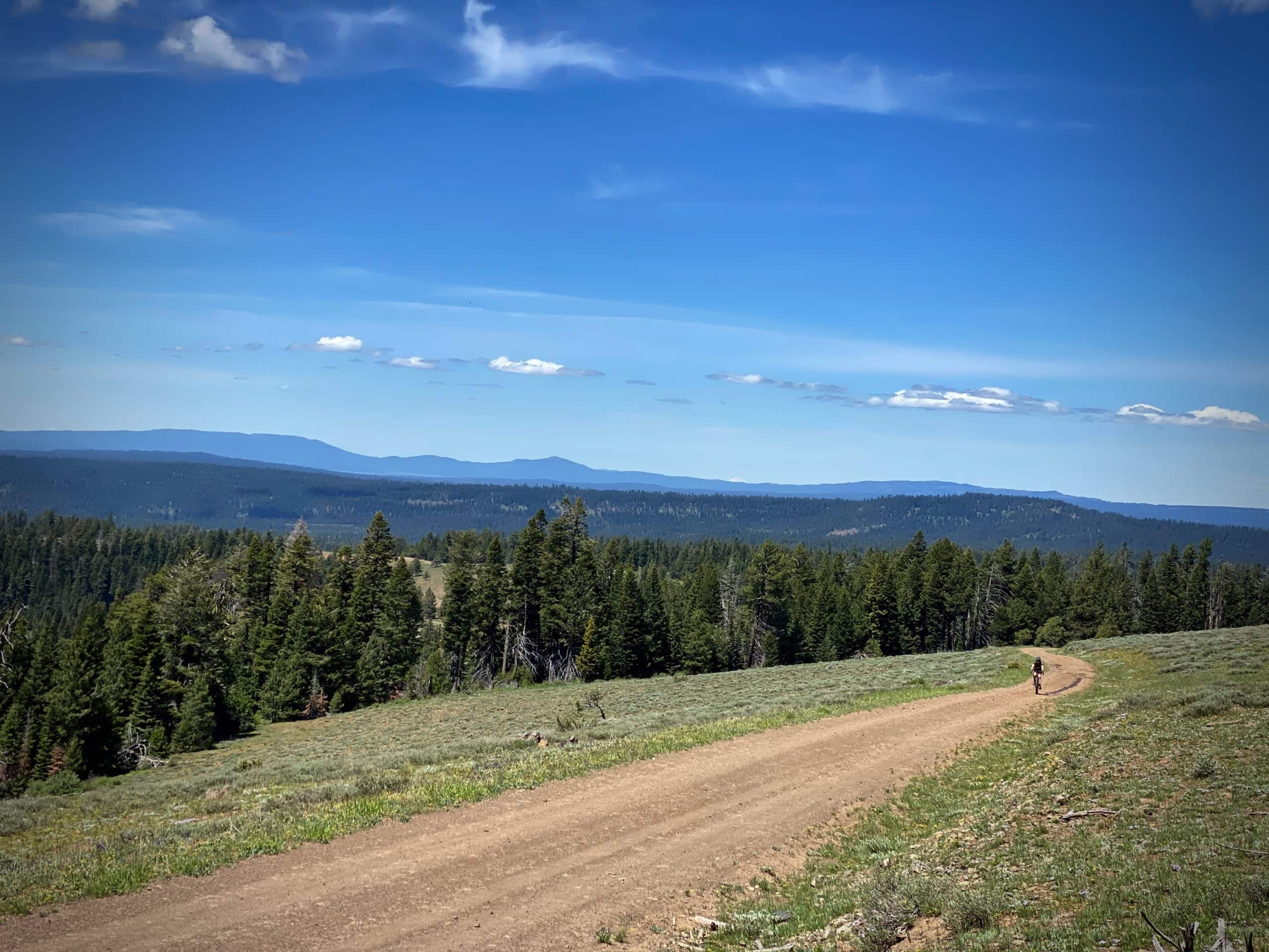 Bike rider on gravel road near Wolf Mountain Lookout in the Ochoco National forest.