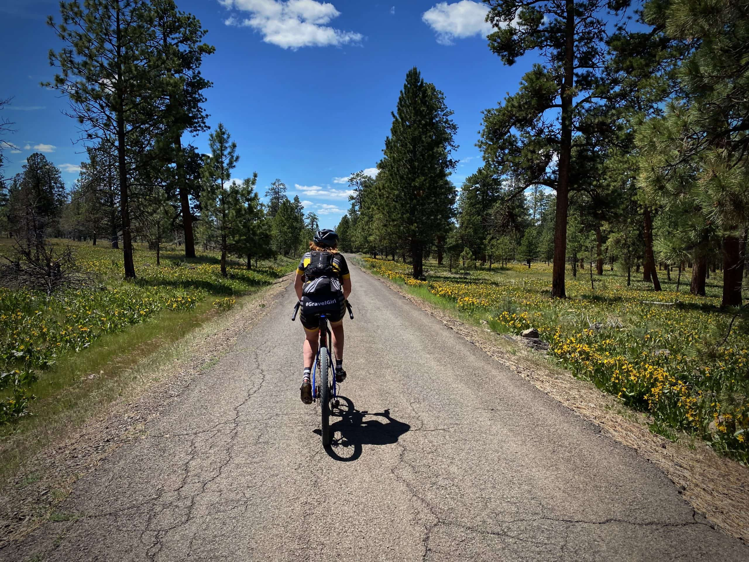 Cyclist on NF-58, single lane paved road in the Ochoco National forest.