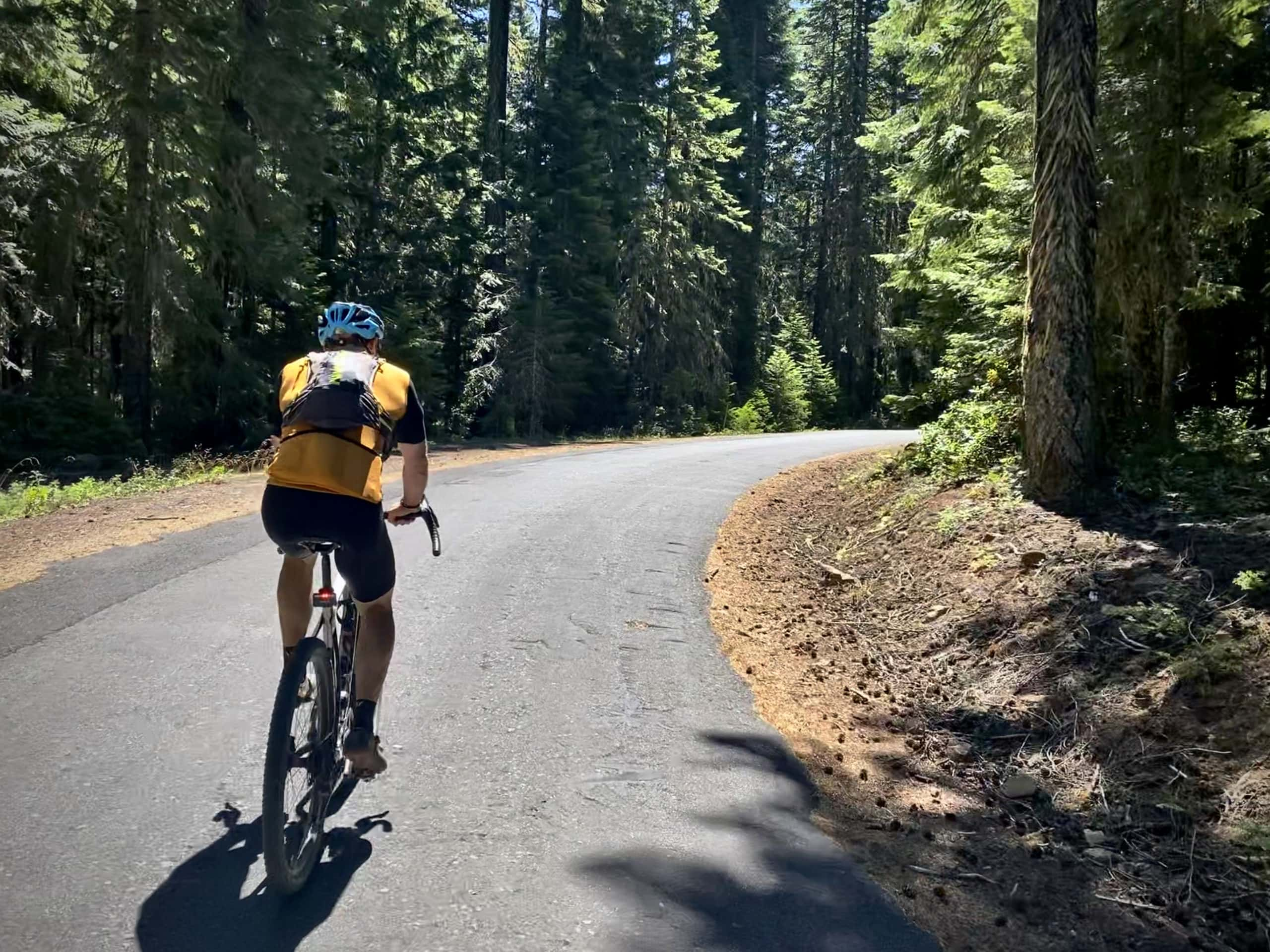 Cyclist on small single lane paved road in the Mt Hood National forest near Hood River, OR.