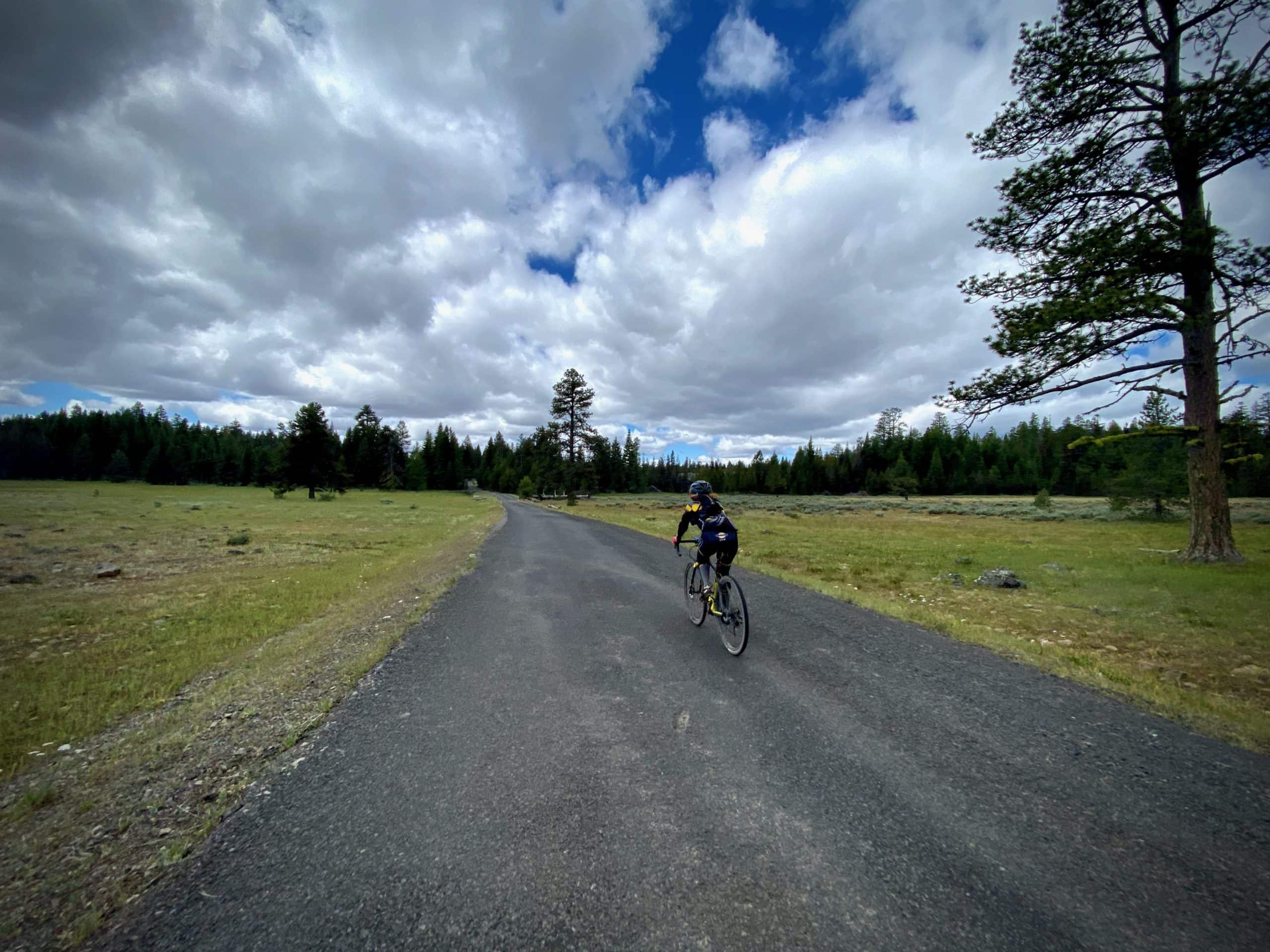 Cyclist riding through the high alpine meadows on NF 2630 in the Ochoco Mountains near Mitchell, Oregon.